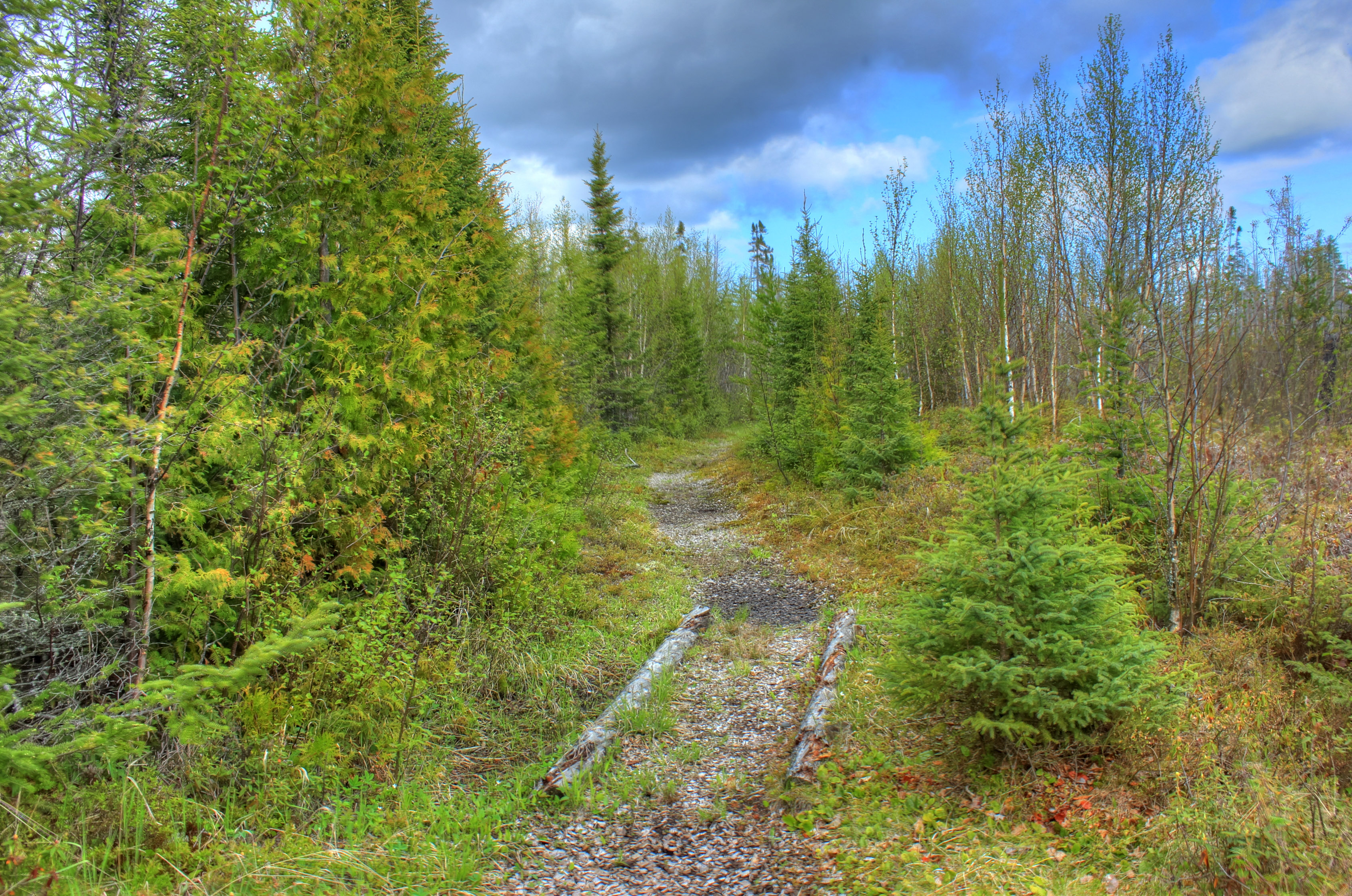 Image result for hiking trail