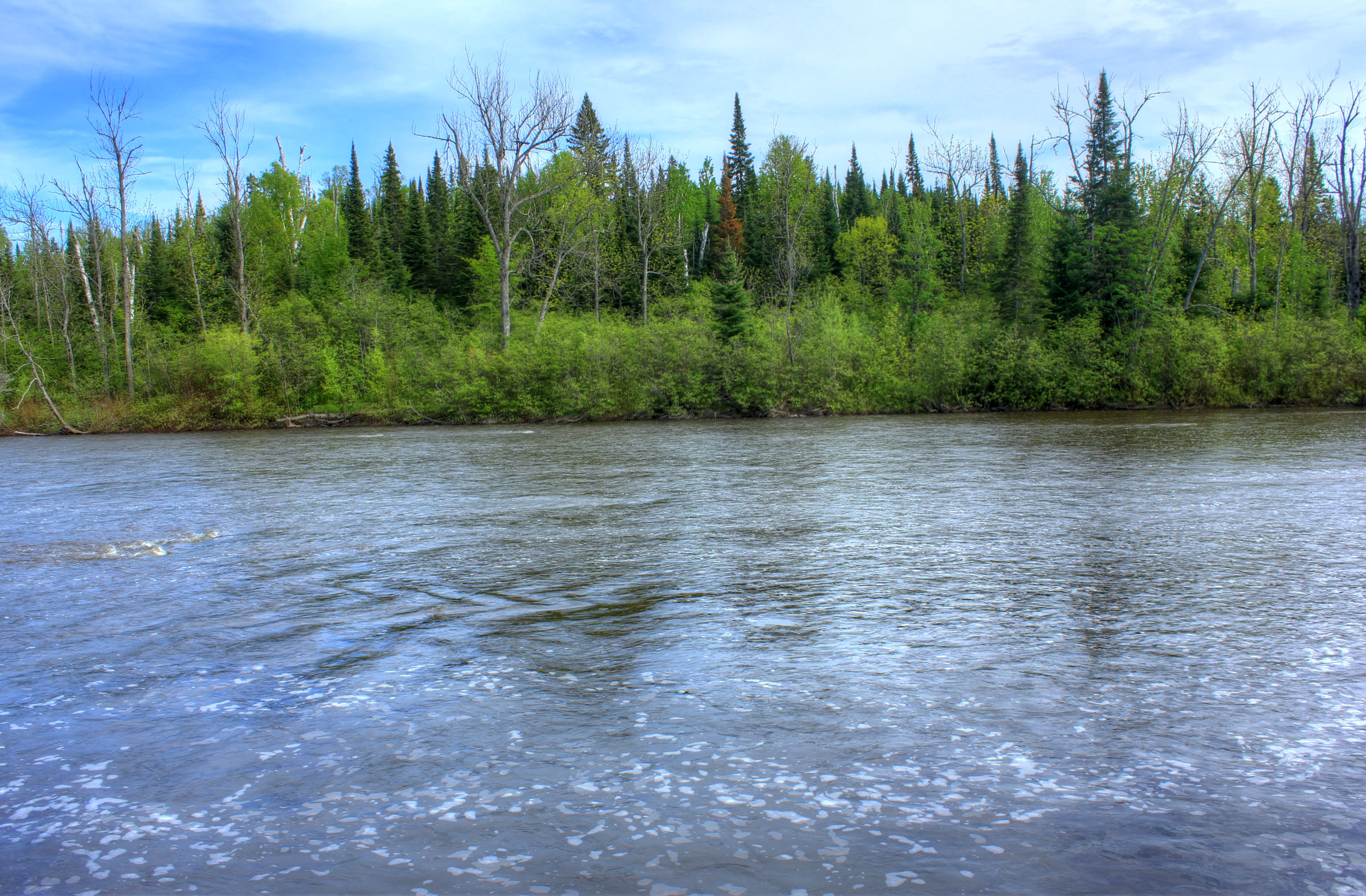 pigeon river pollution Troubled waters: an analysis of water quality and biota in the  oxygen levels and creating nutrient pollution,  little pigeon river is a tremendous.