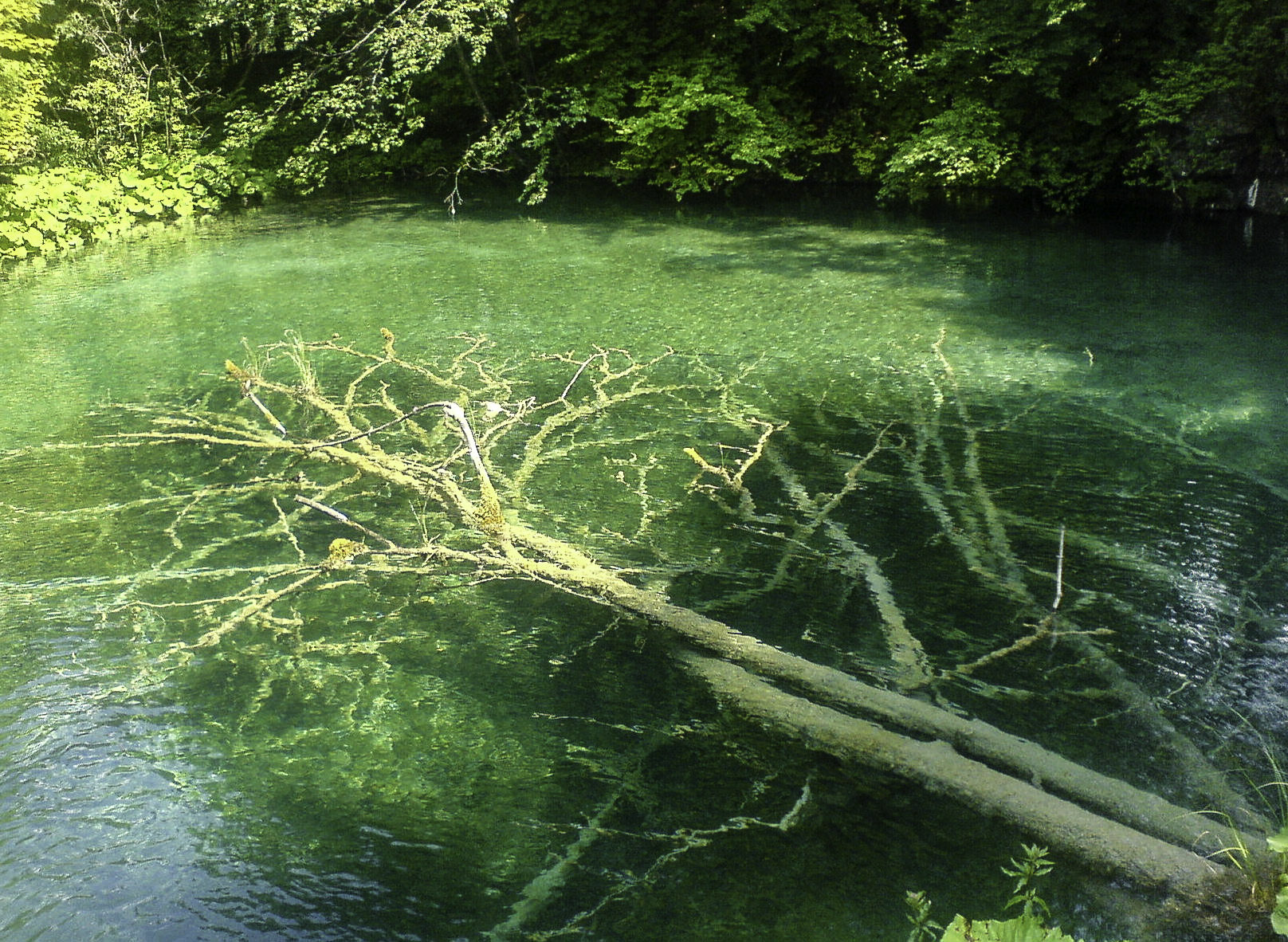 Croatia Nature Park Plitvice