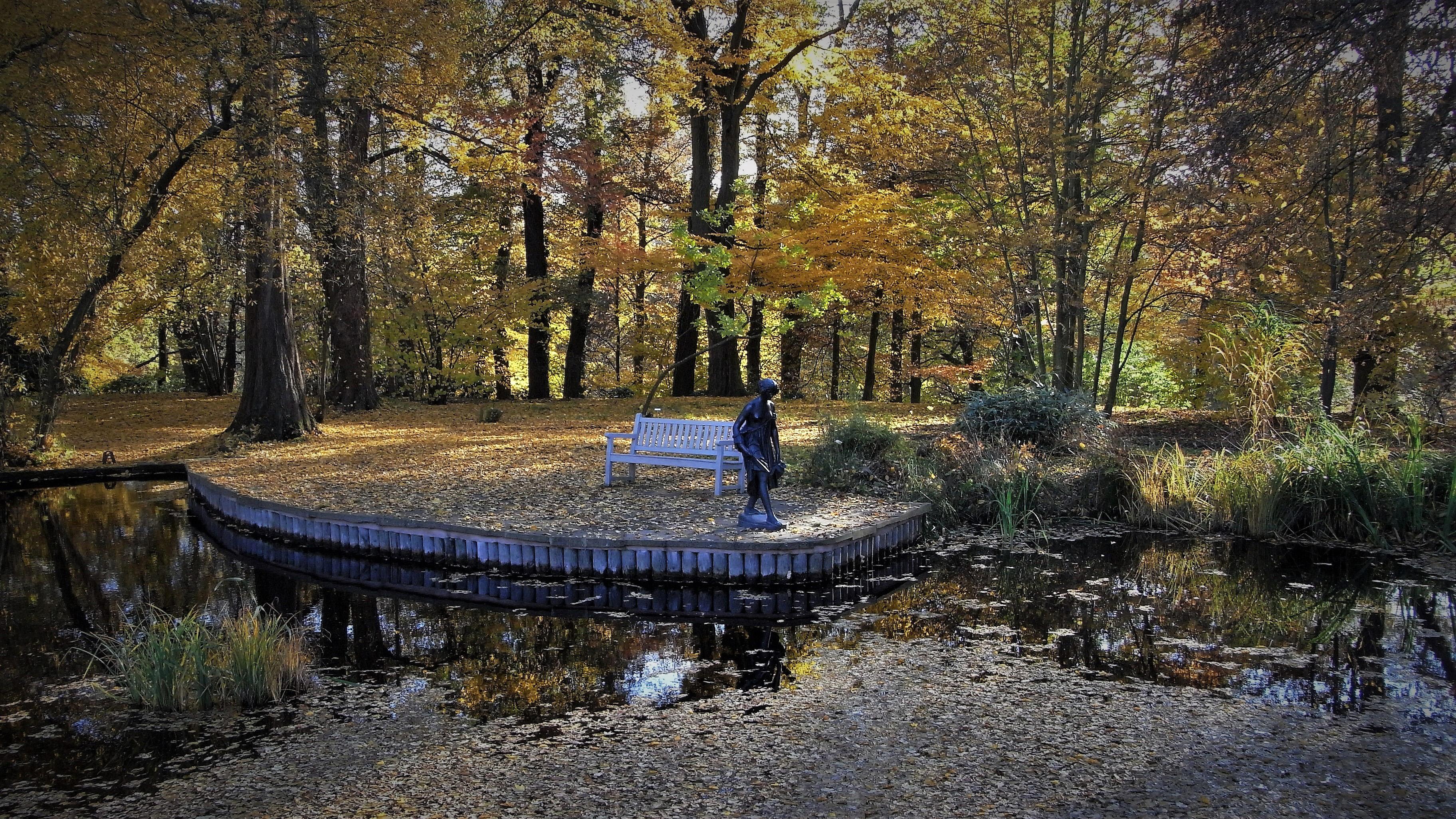 Scene in the Botanical Gardens in Germany image - Free stock photo ...