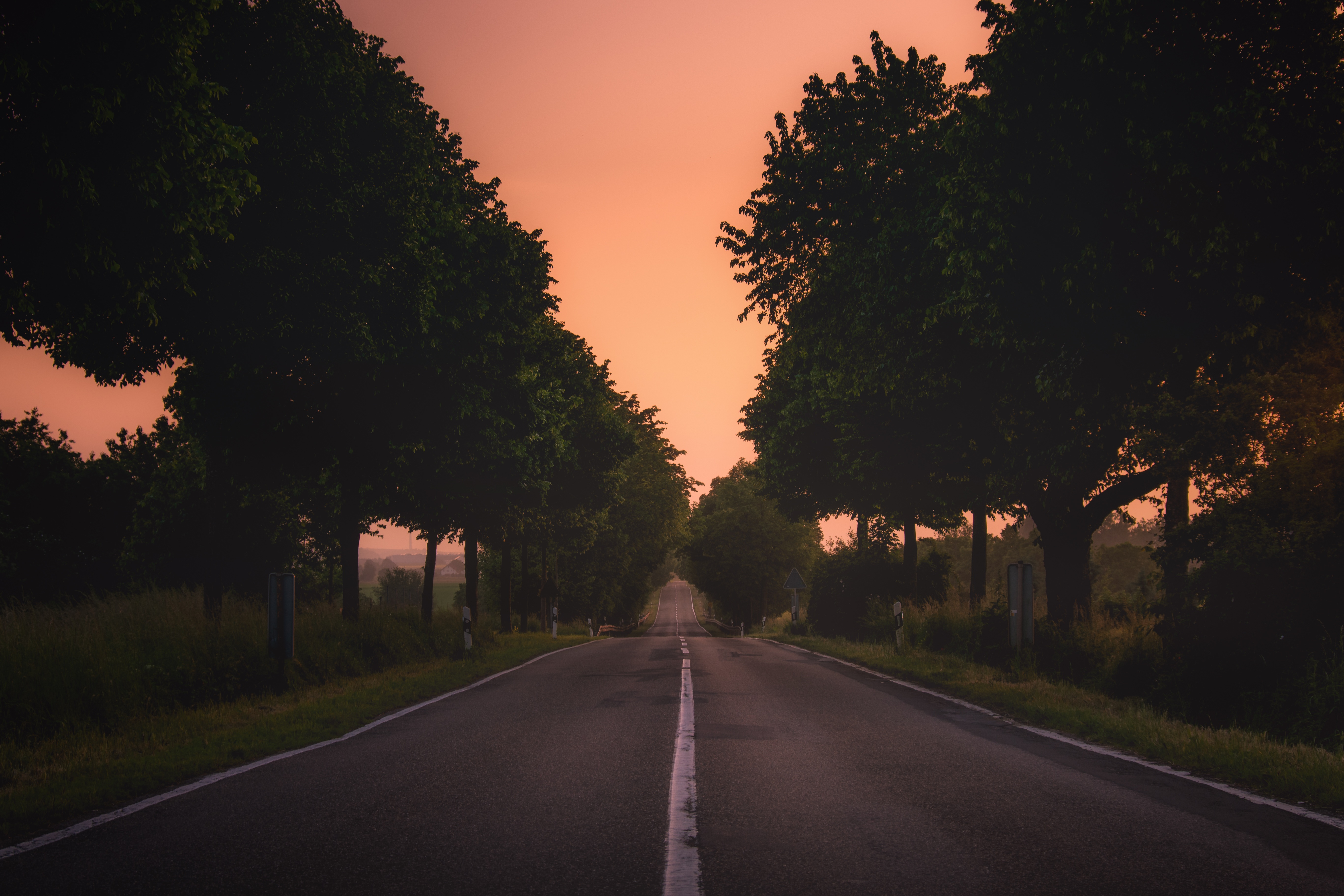 Scenic Road In Monsheim Germany Image Free Stock Photo