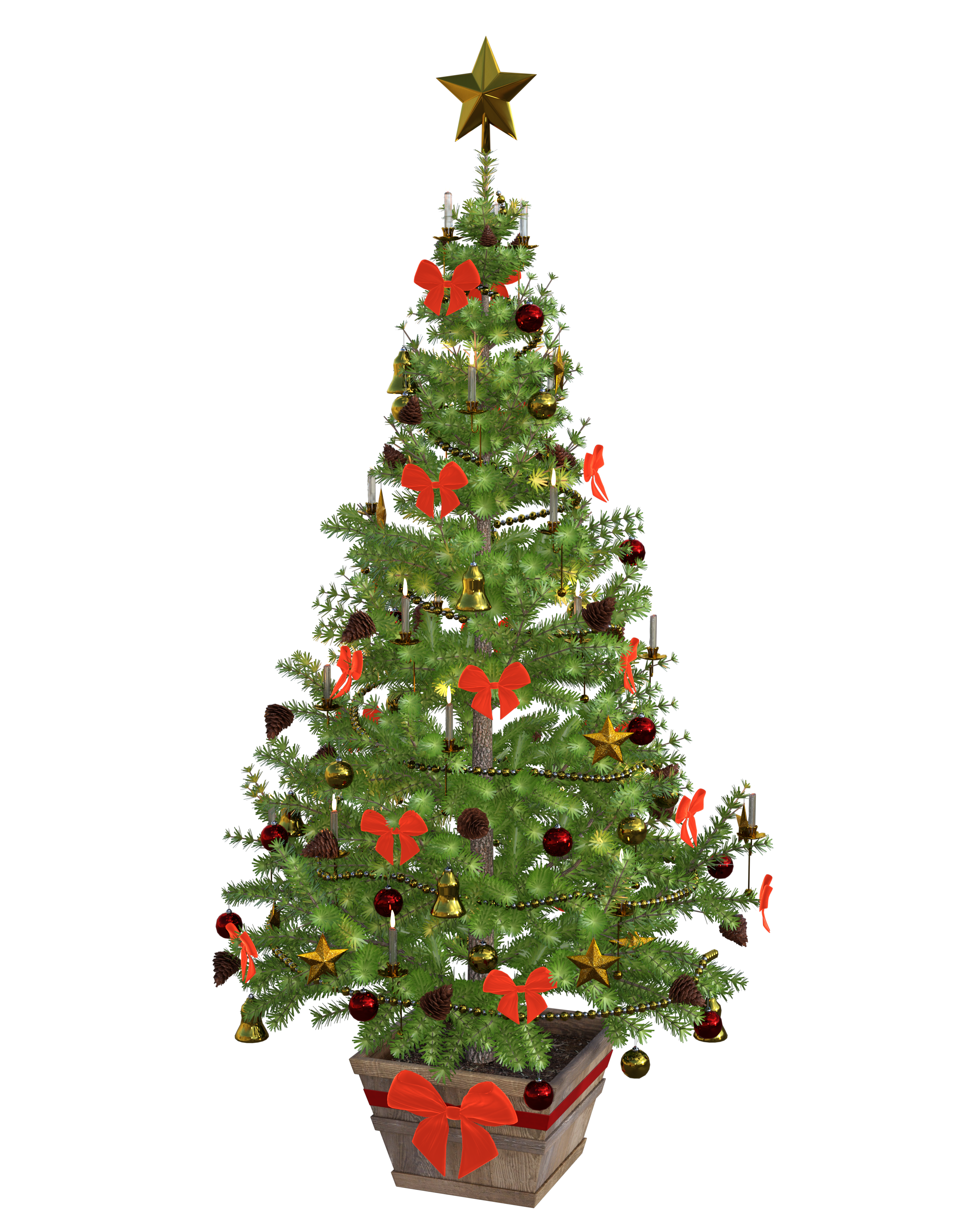 Christmas Model.Christmas Tree 3d Model Image Free Stock Photo Public
