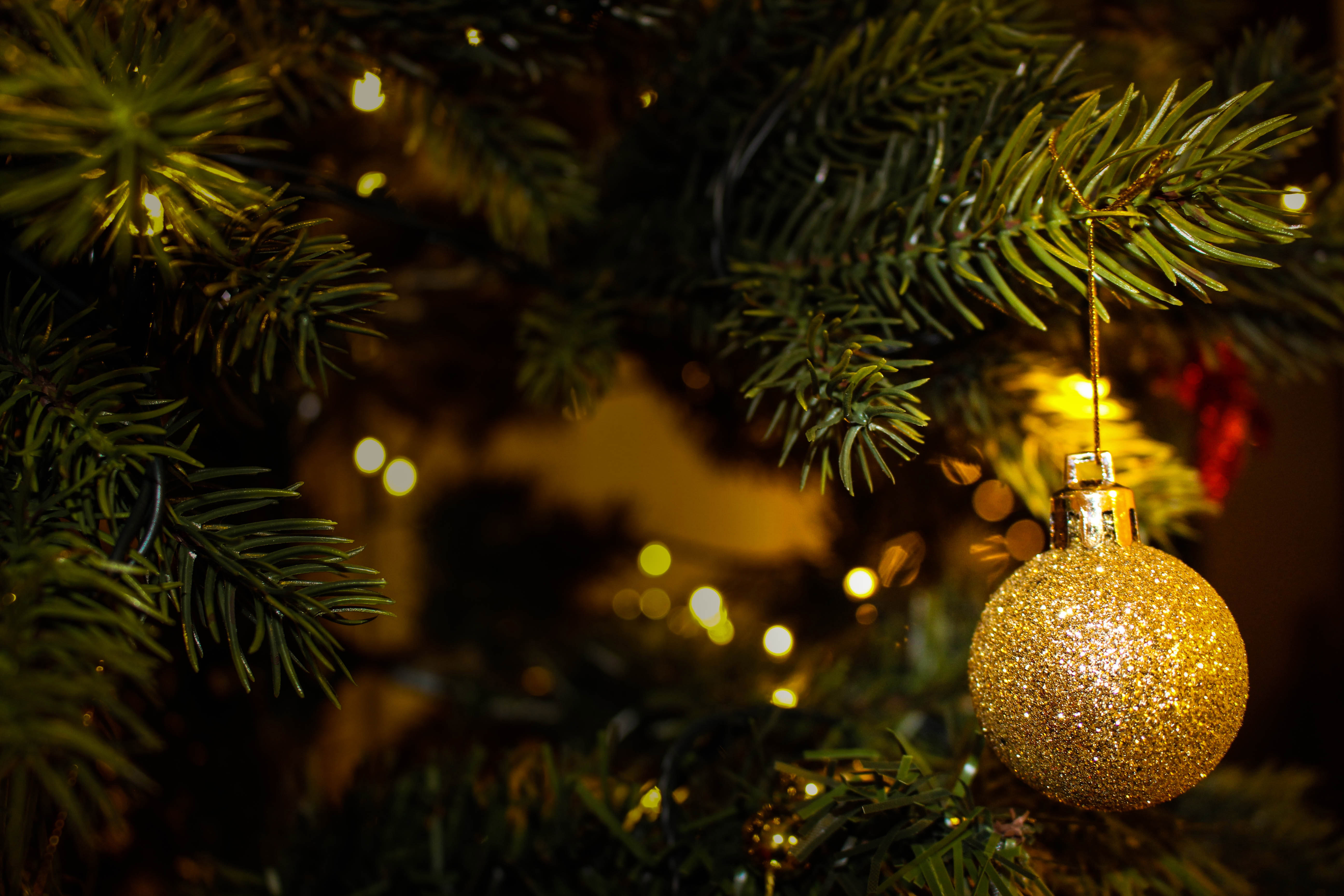 Golden Tree Christmas Ornament image - Free stock photo ...