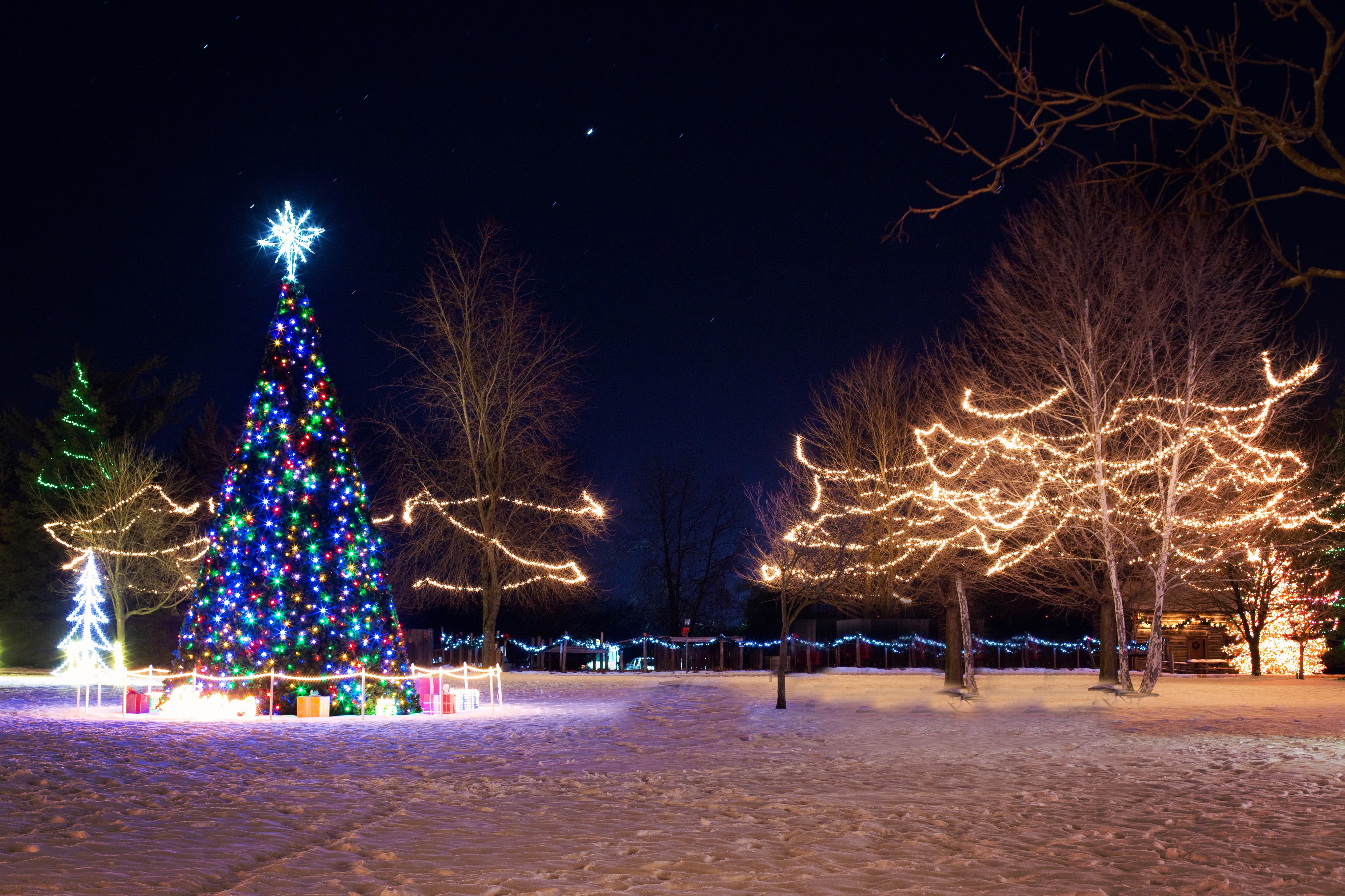 Neon Christmas Tree and Lights and Decorations image ...