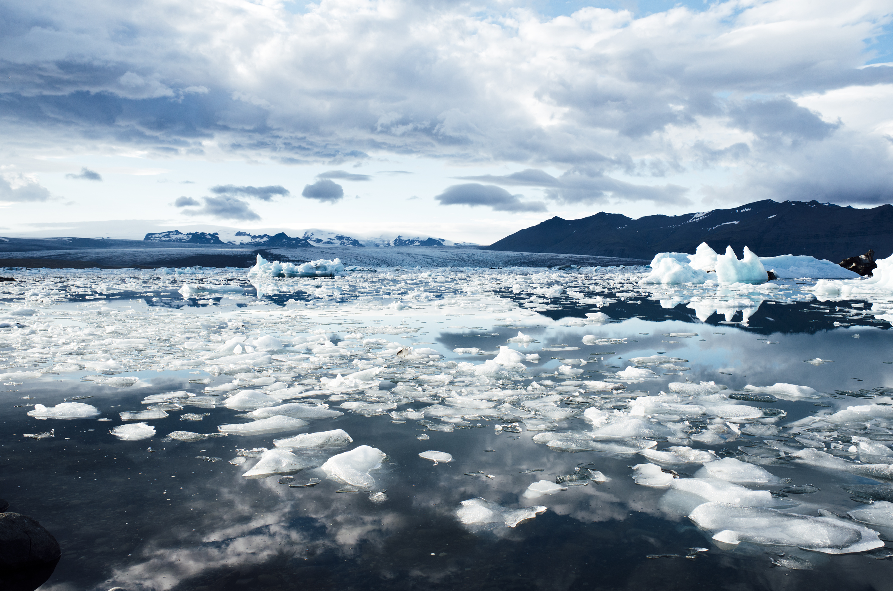 Ice Fields in Iceland image - Free stock photo - Public