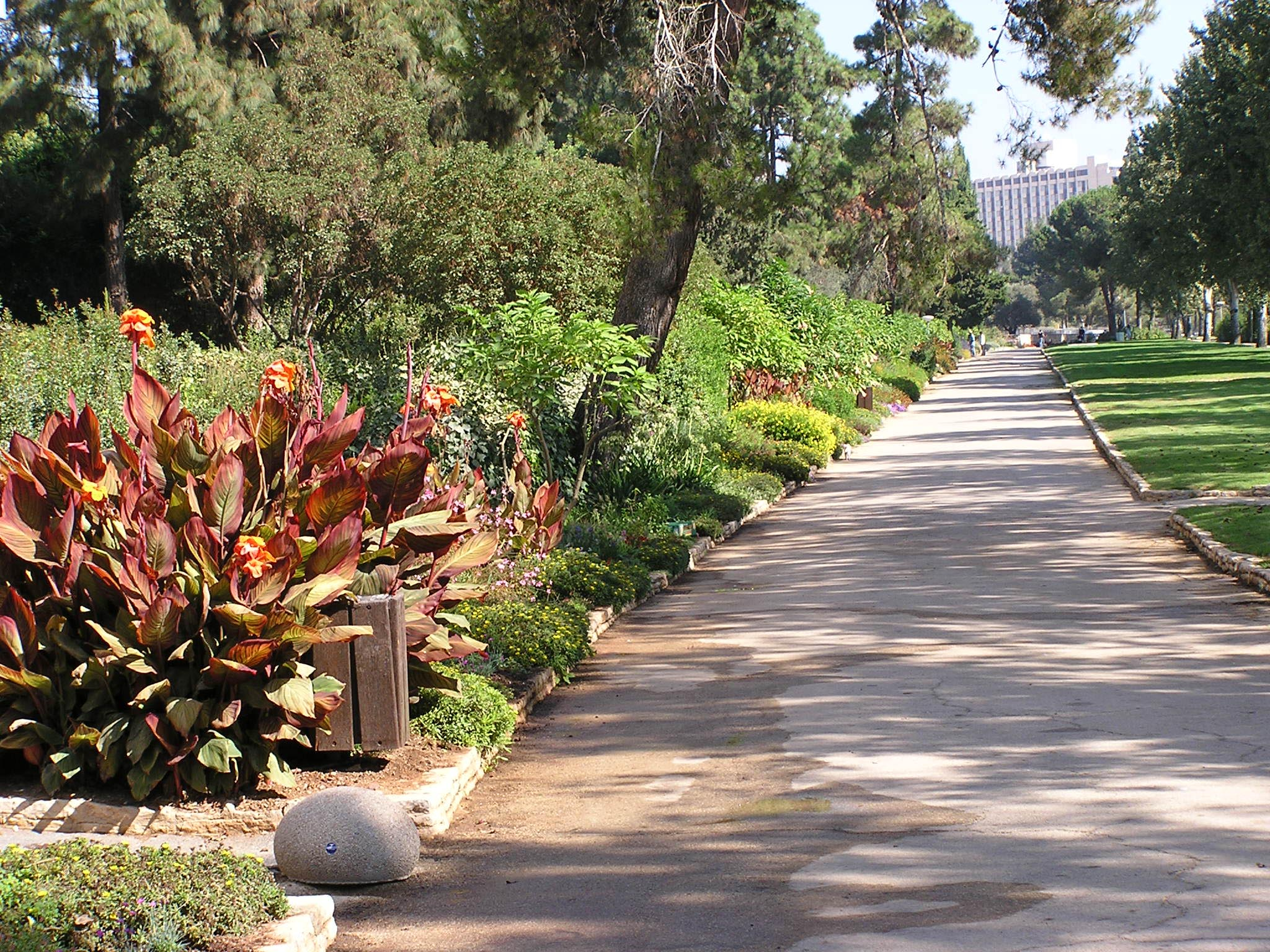 free stock photo of garden at the hebrew university in jerusalem