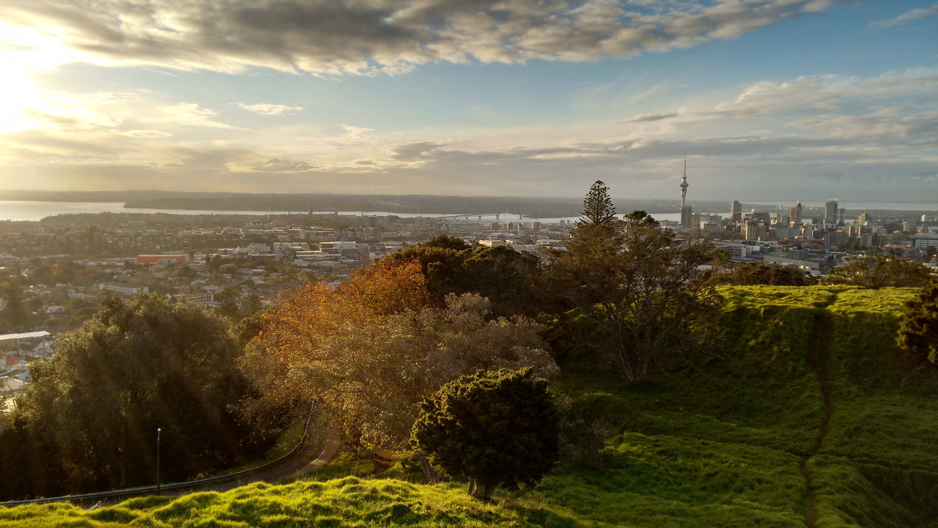 Landscape and cityscape with light from above in auckland for Landscaping auckland