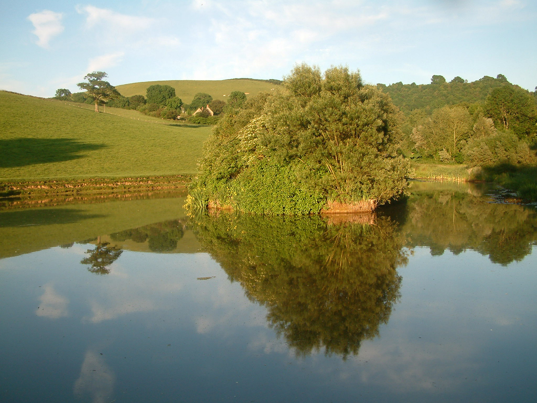 Pond and Serene Landscape with reflections image - Free