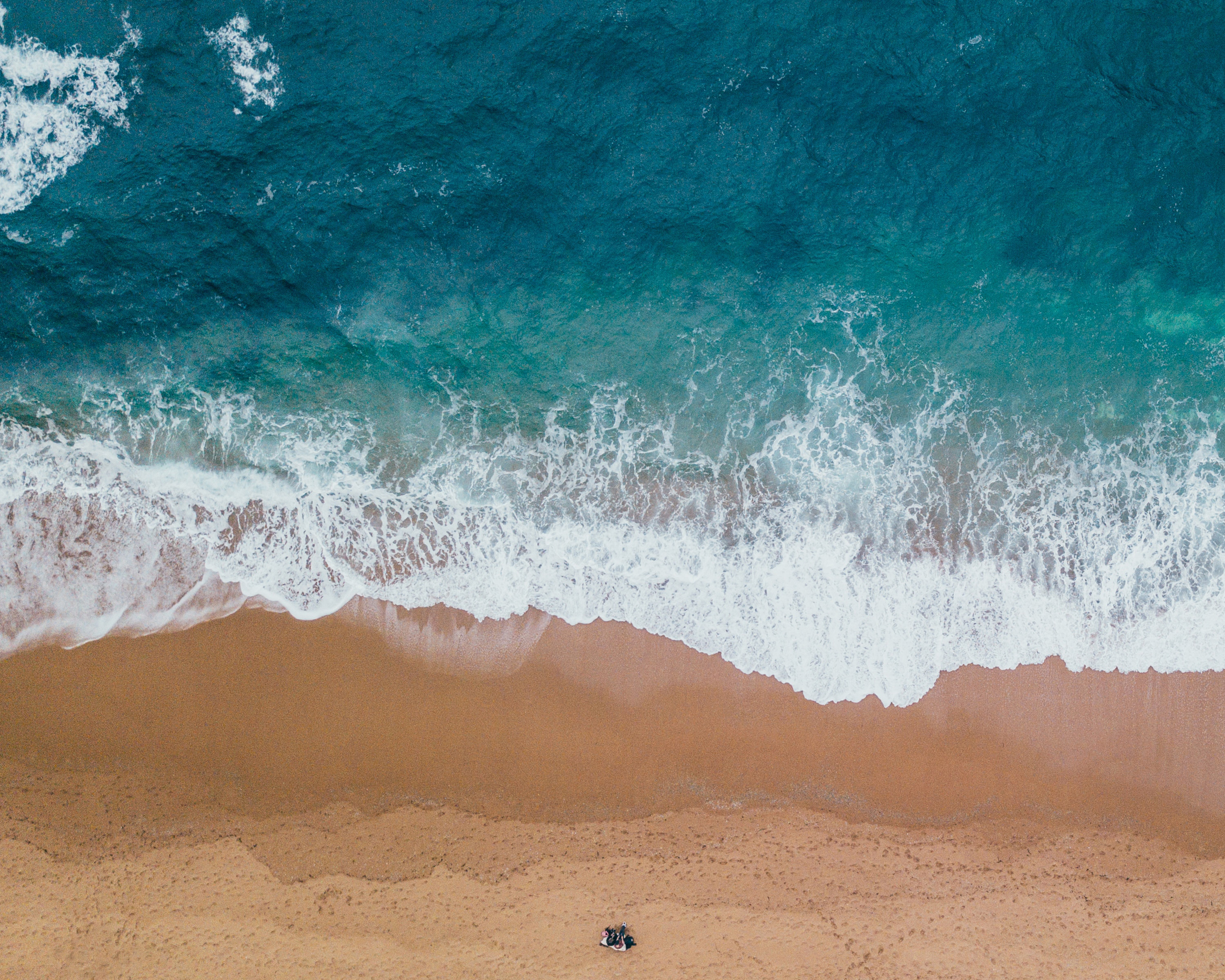 shoreline of sand and ocean image free stock photo public domain