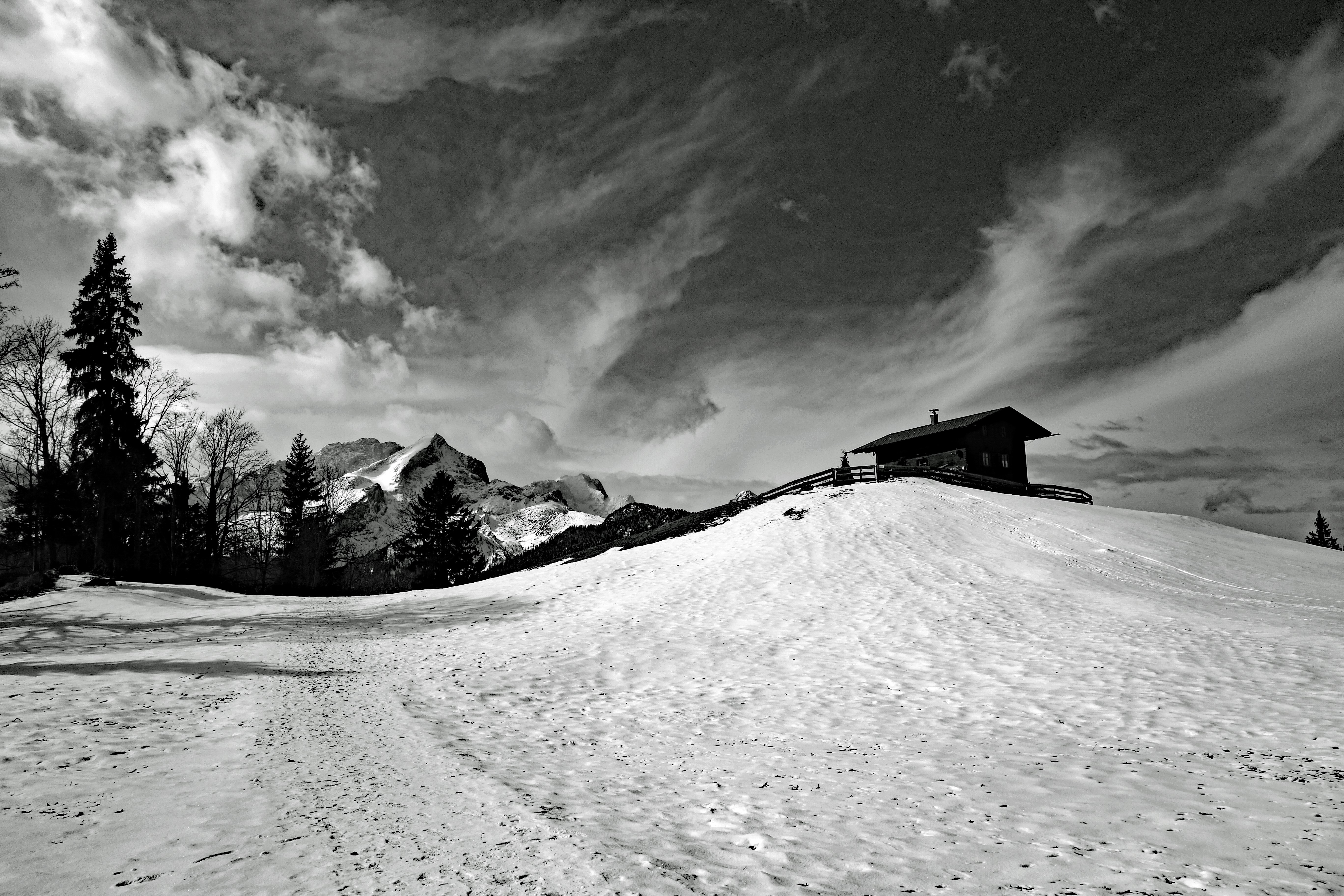 Winter landscape in black and white image free stock photo