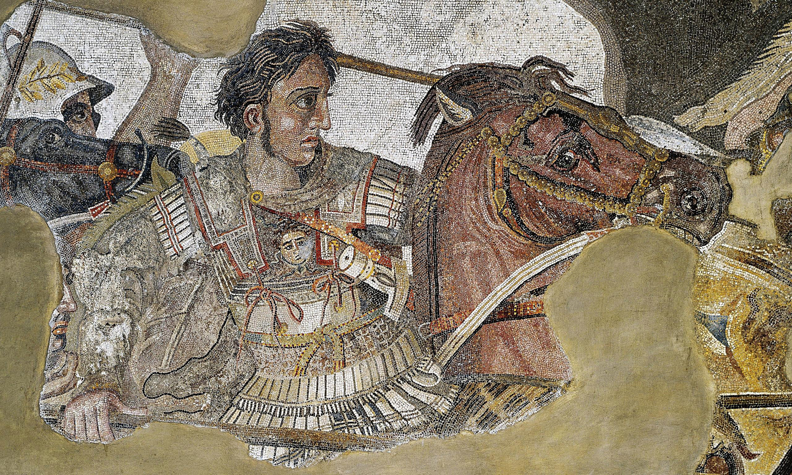 alexander great administration Alexander the great - ebook download as pdf file (pdf), text file (txt) or read book online life of alexander the great.