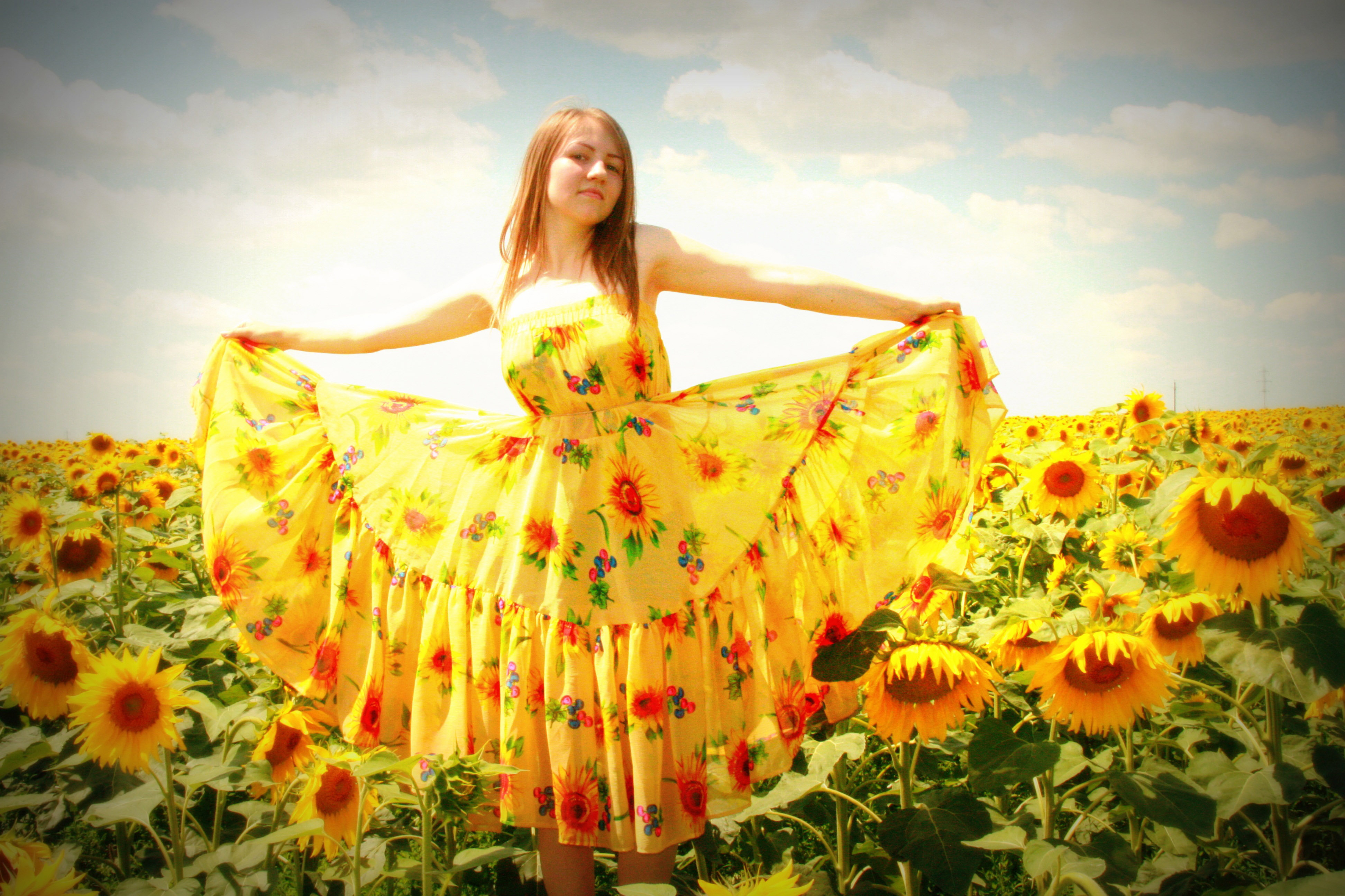 Girl In Sunflower Dress And Sunflower Field Image Free Stock Photo