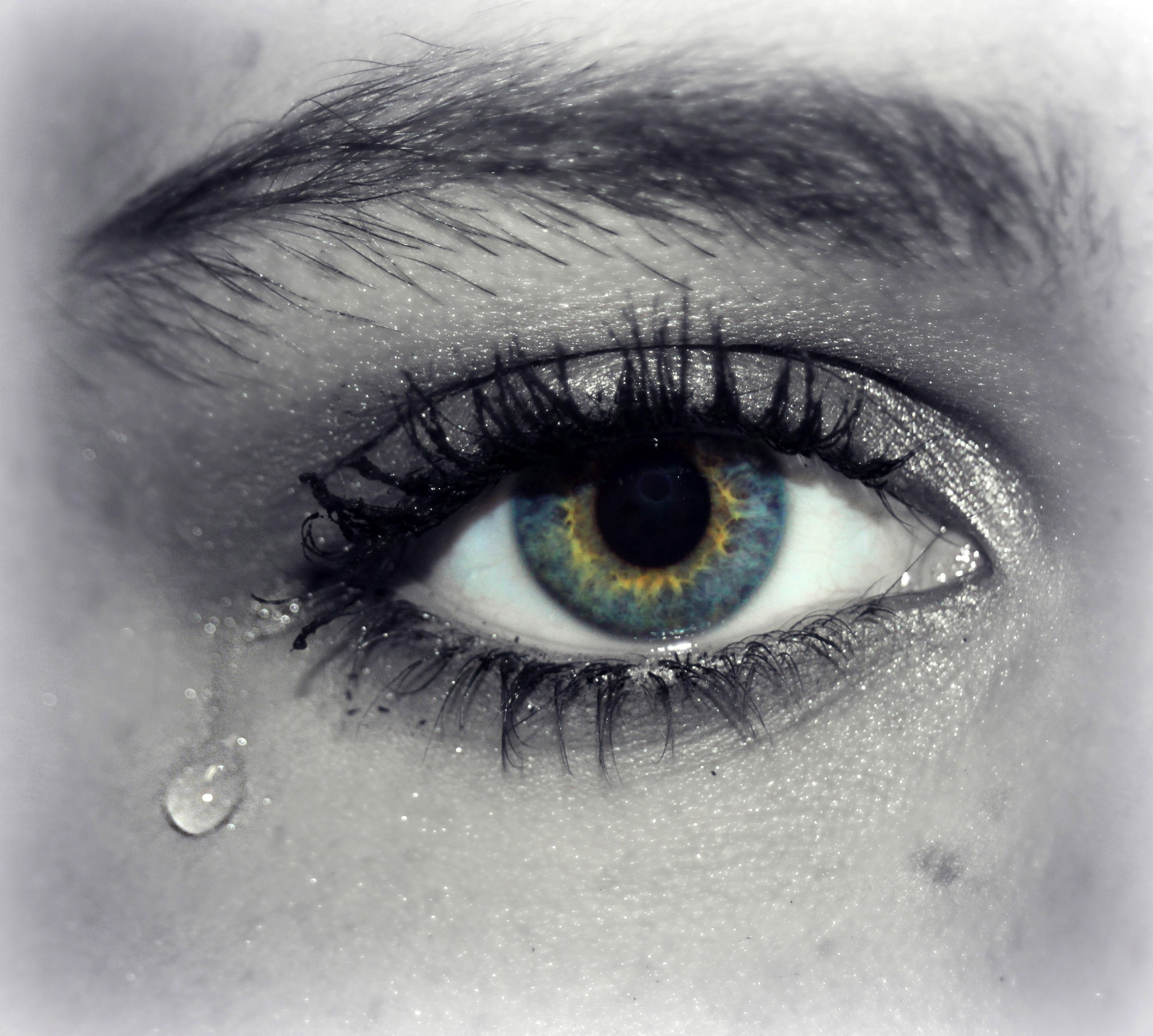 Image result for teardrop