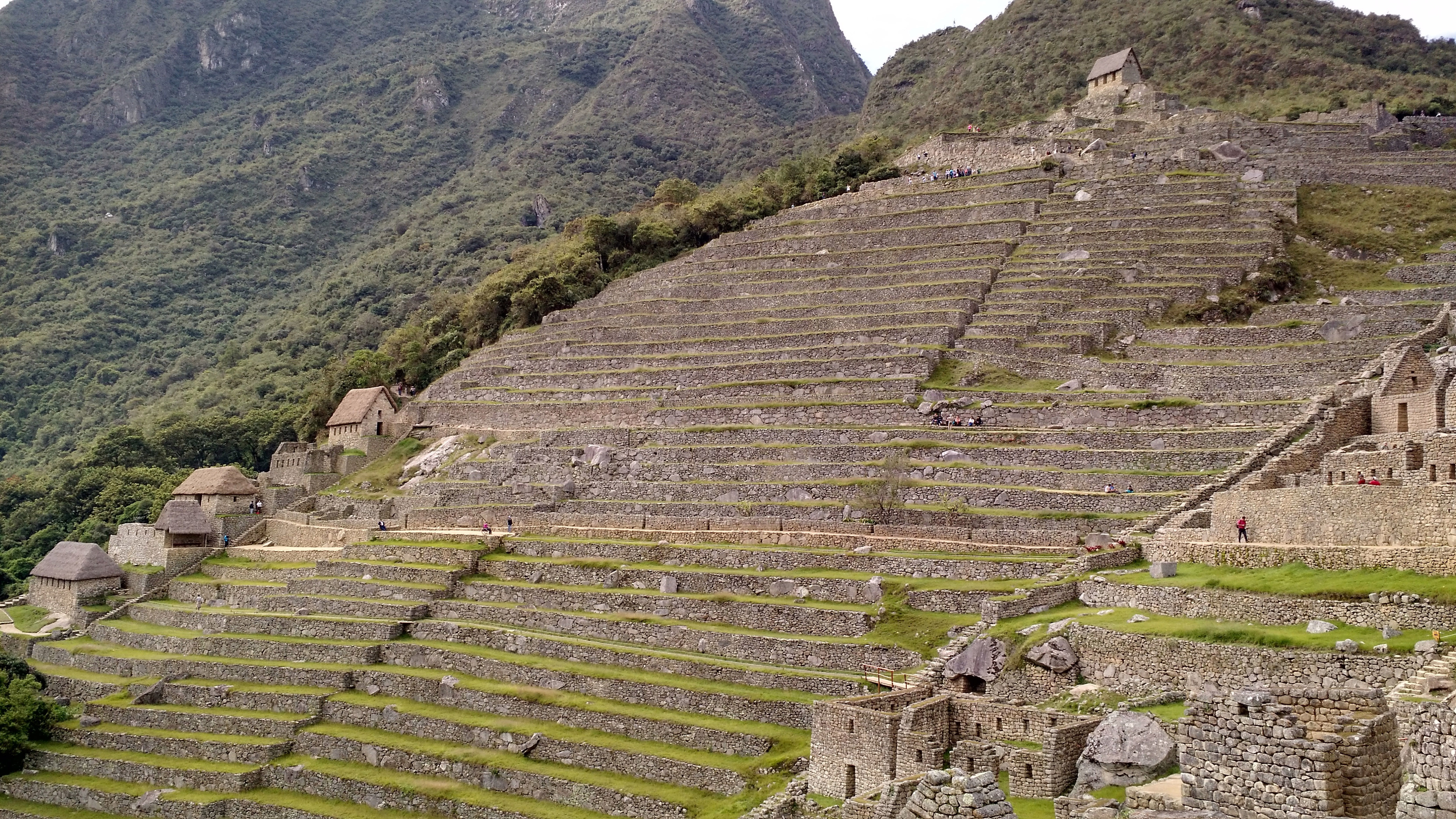 Free stock photo of terrace steps at machu picchu peru for Terrace steps