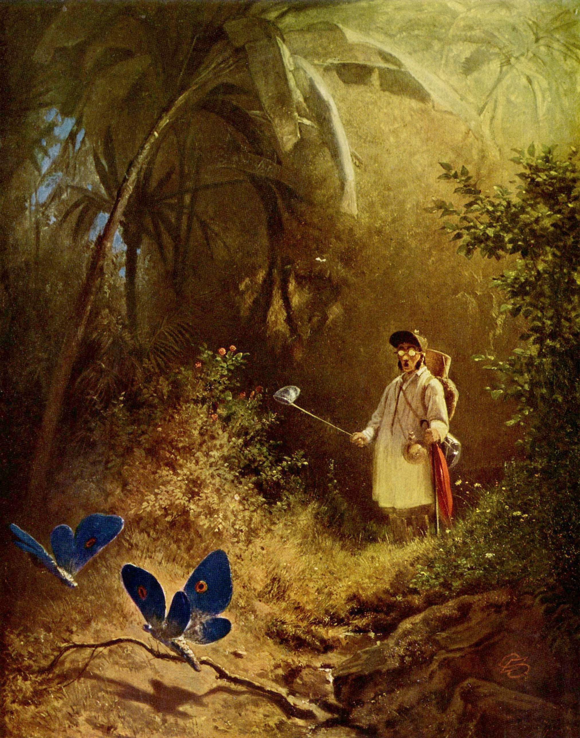 The Butterfly Hunter Art image - Free stock photo - Public