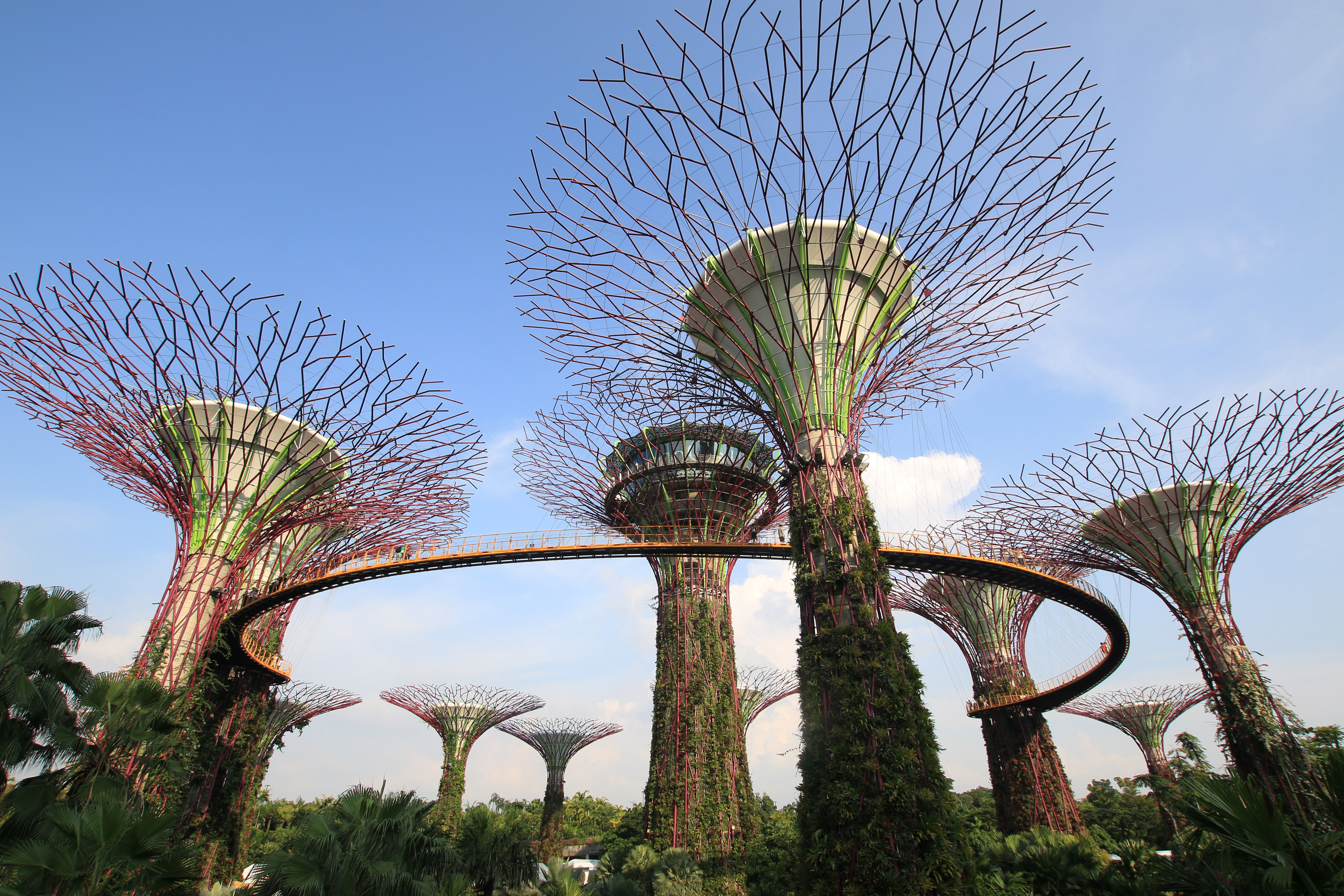 Gardens By The Bay ...