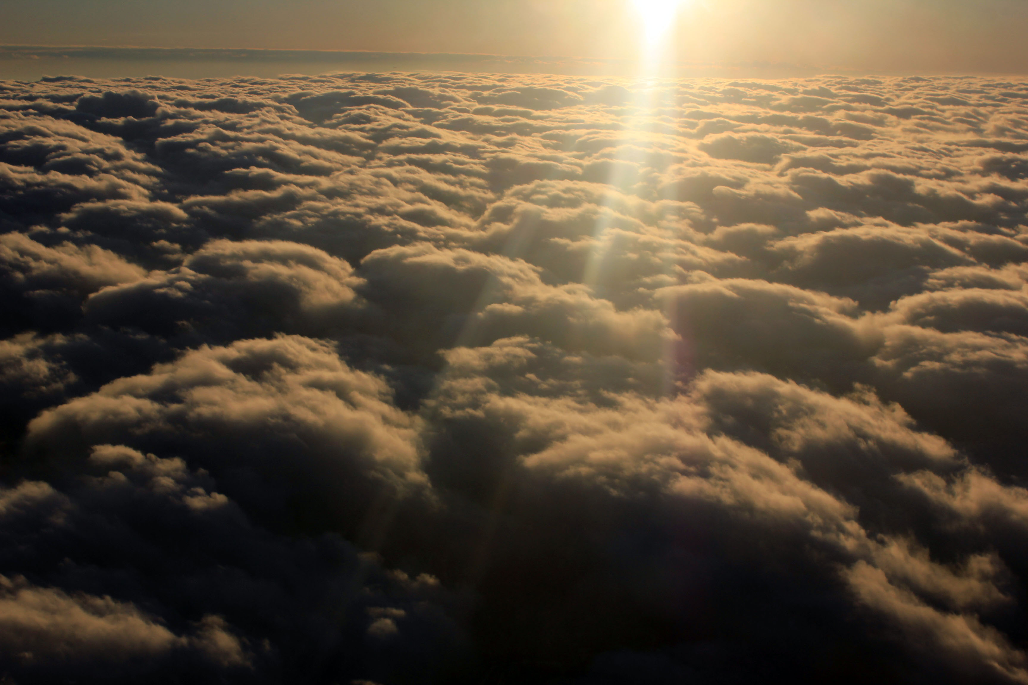 Sunlight above the clouds image - Free stock photo ...