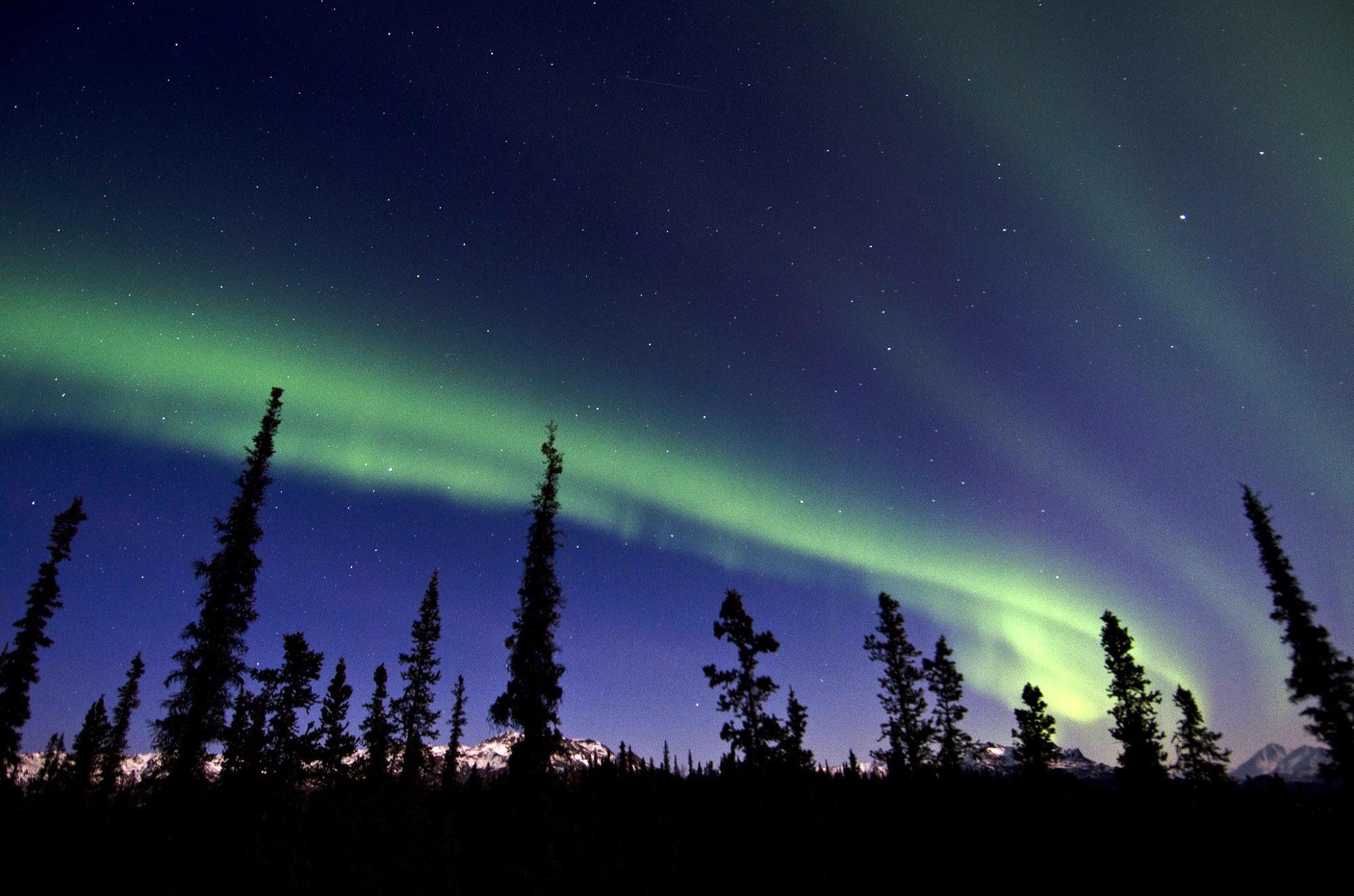 Alaska Corporation Search >> Aurora Borealis in Denali National Park, Alaska image - Free stock photo - Public Domain photo ...
