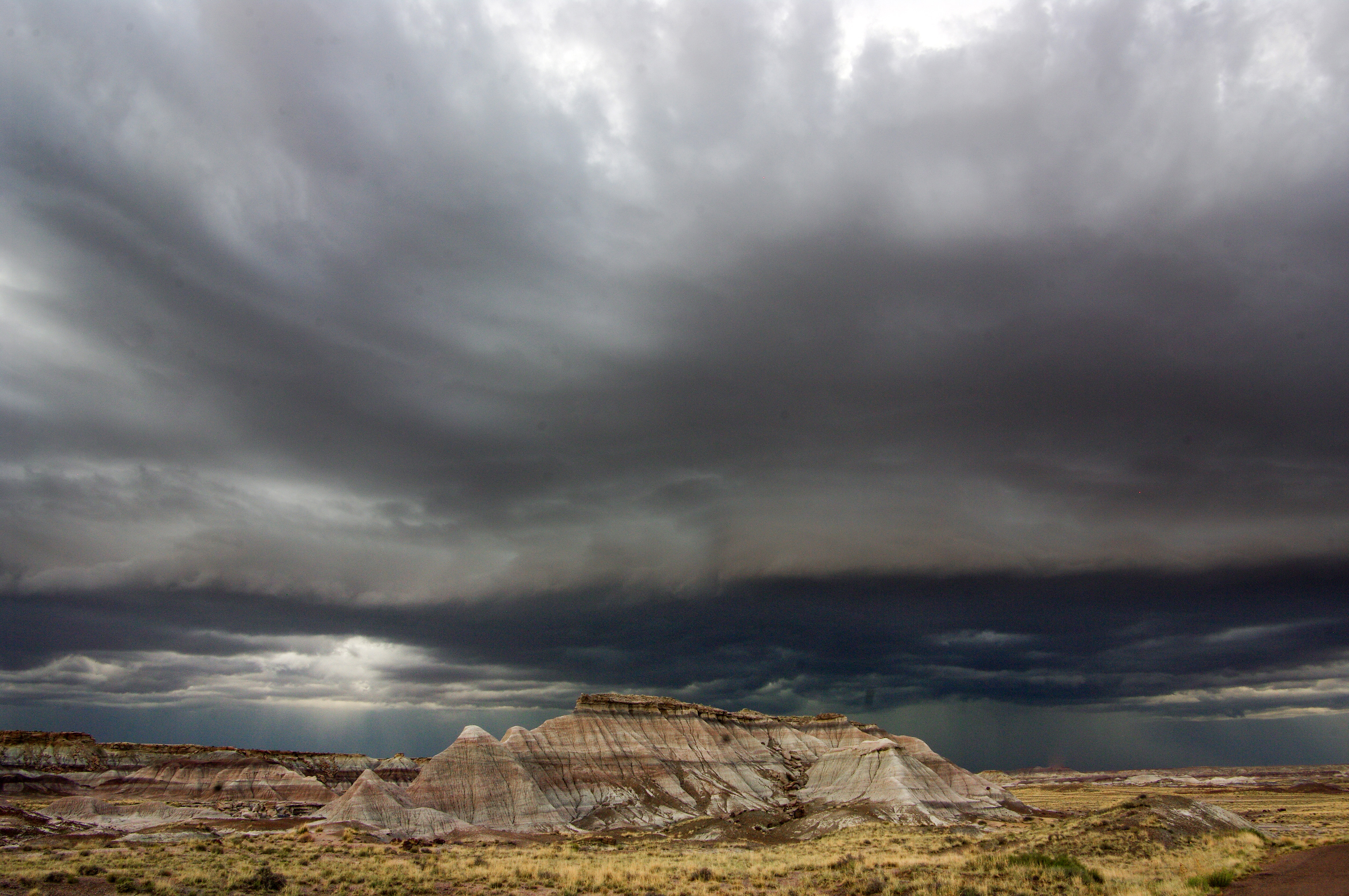 Storm Clouds over the Petrified Forest Landscape image ...
