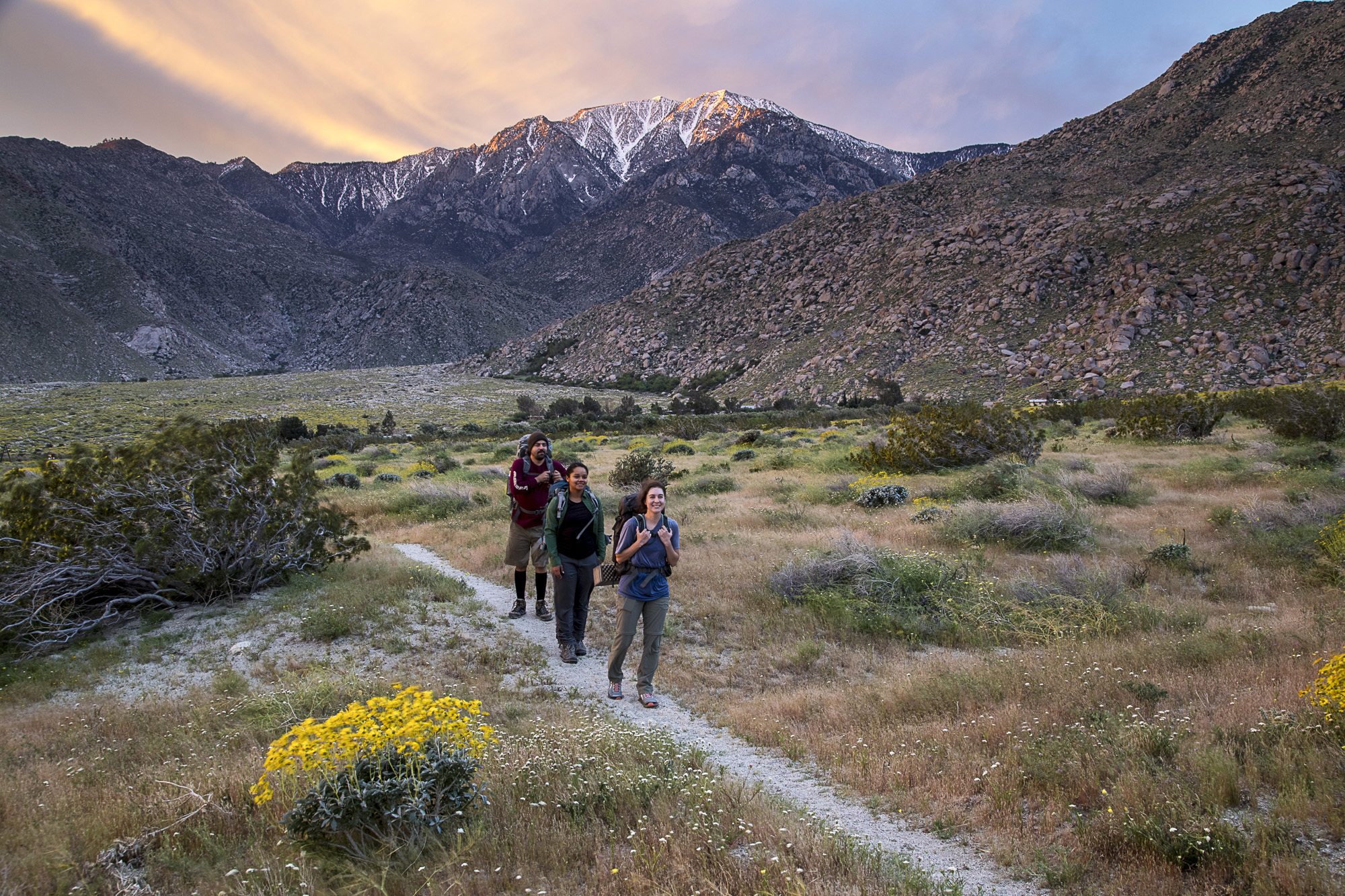 pacific crest trail in california image - free stock photo - public domain photo