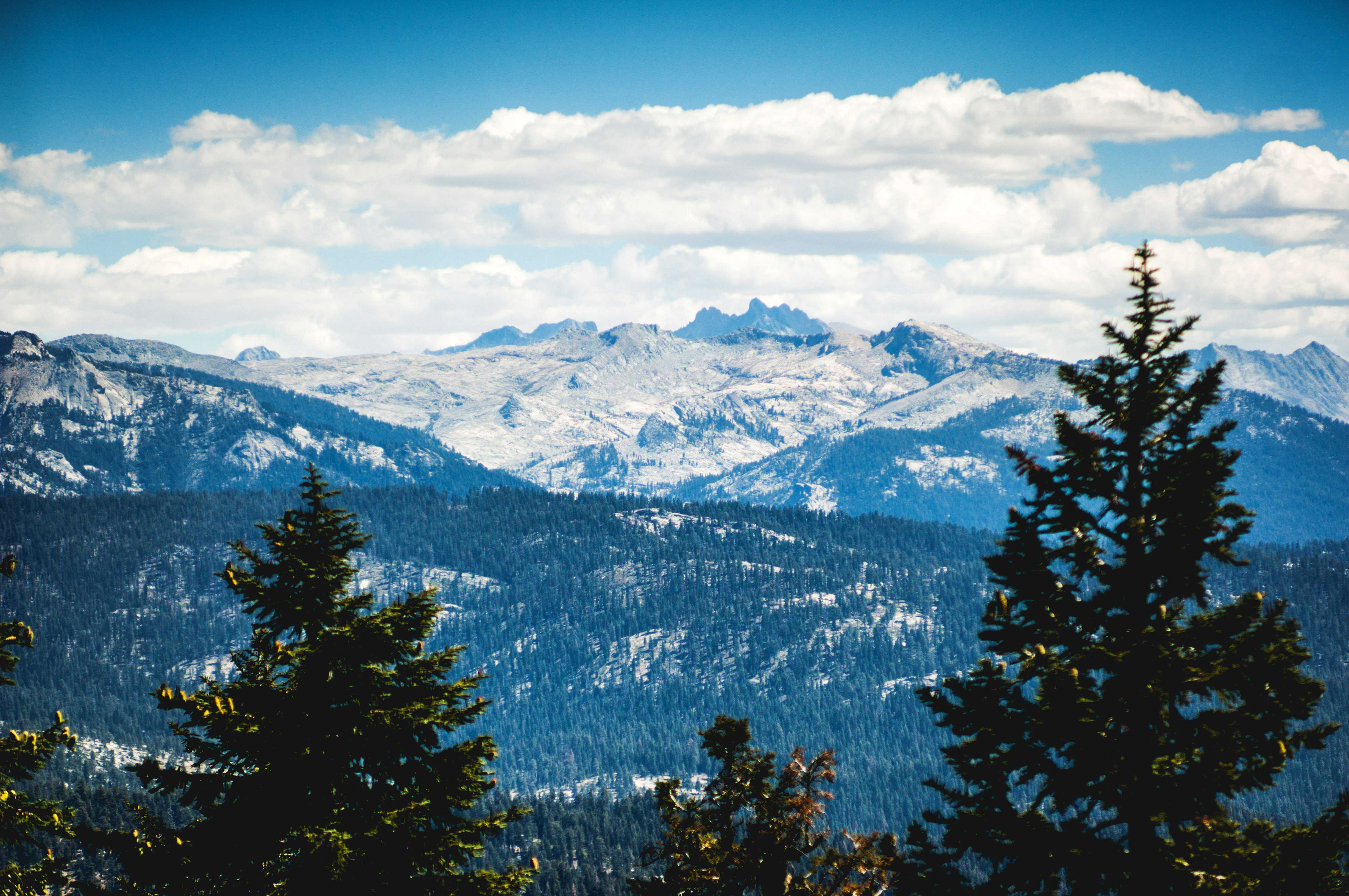 Beautiful Mountain And Forest Landscape In Sequoia National Park