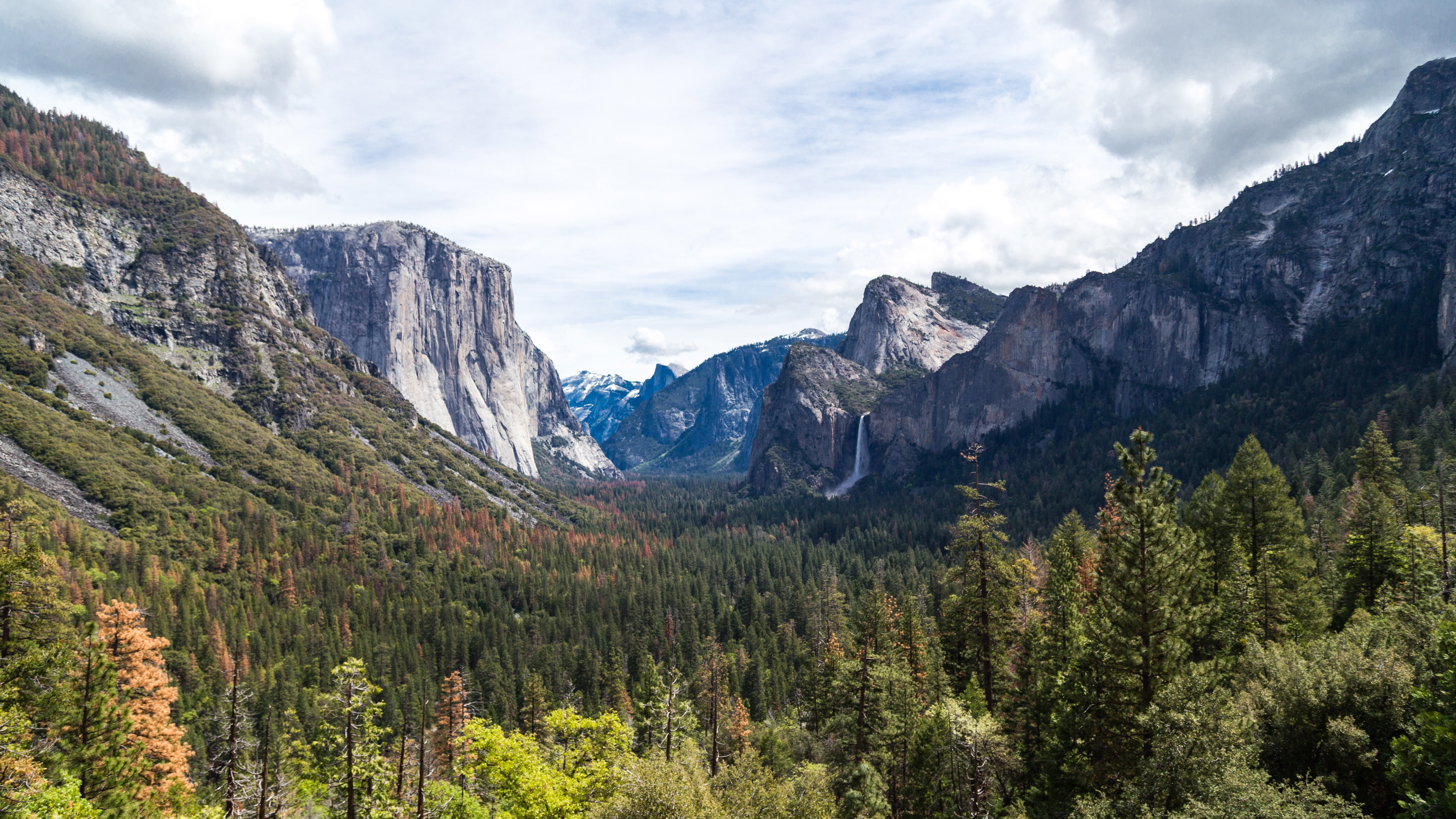 Landscape of the Valley at Yosemite National Park ...