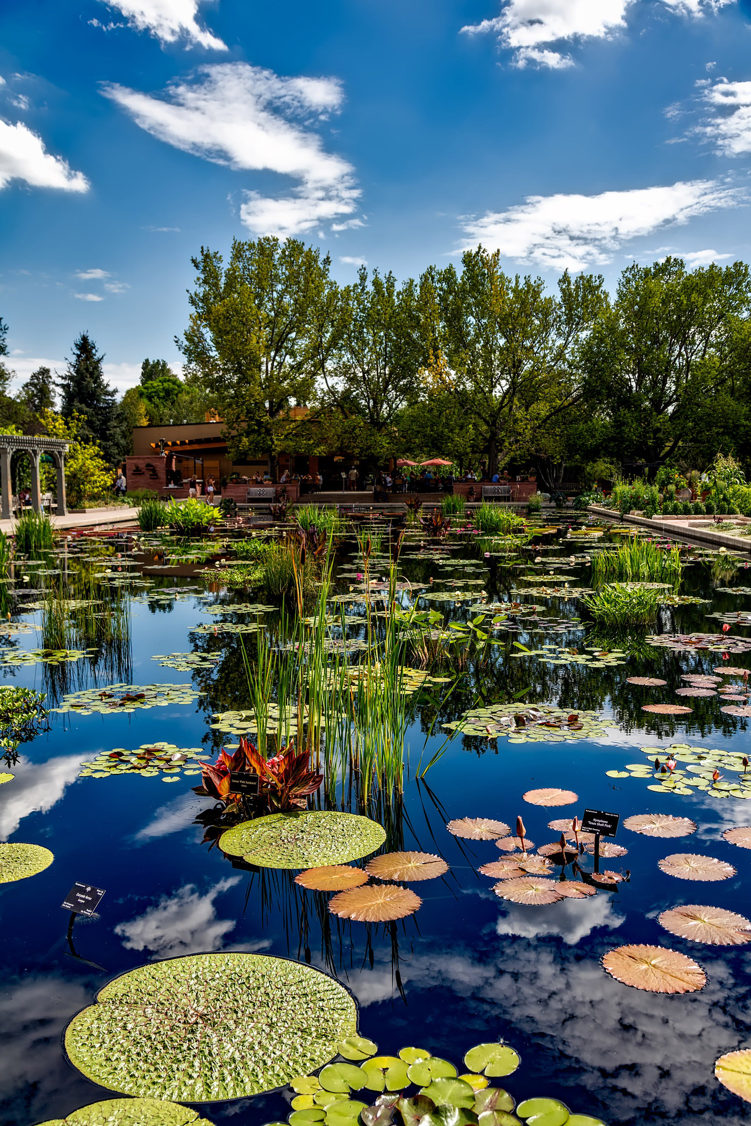 Denver Botanic Gardens Offer Code Best Idea Garden 2018
