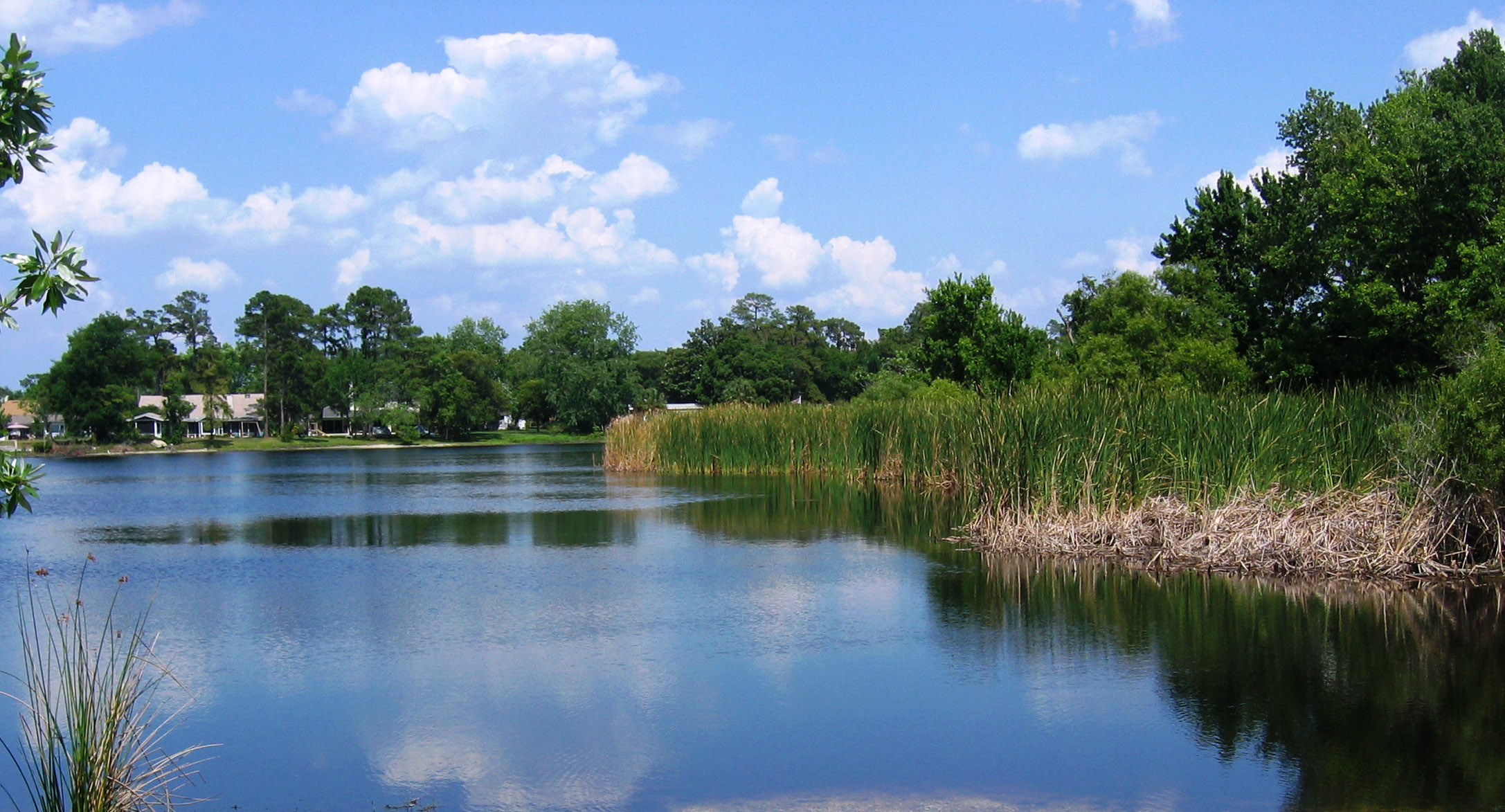 North Triplet Lake In Casselberry Florida Image Free