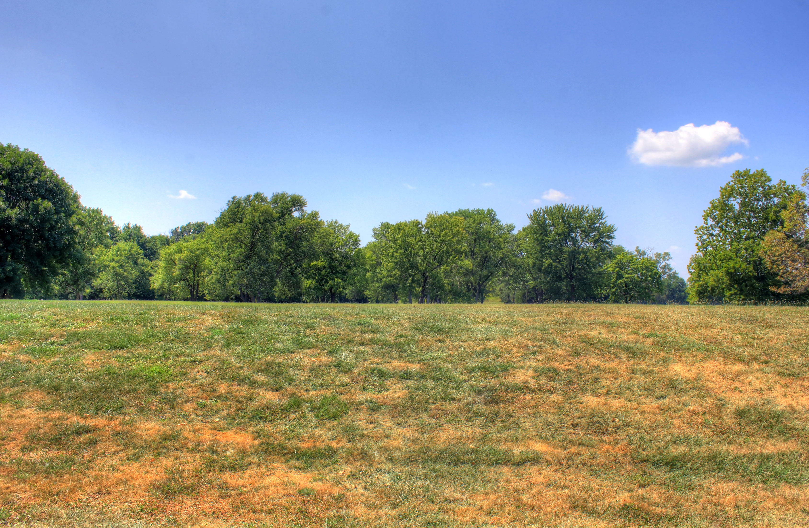 Looking at a small Mound at Cahokia Mounds, Illinois image