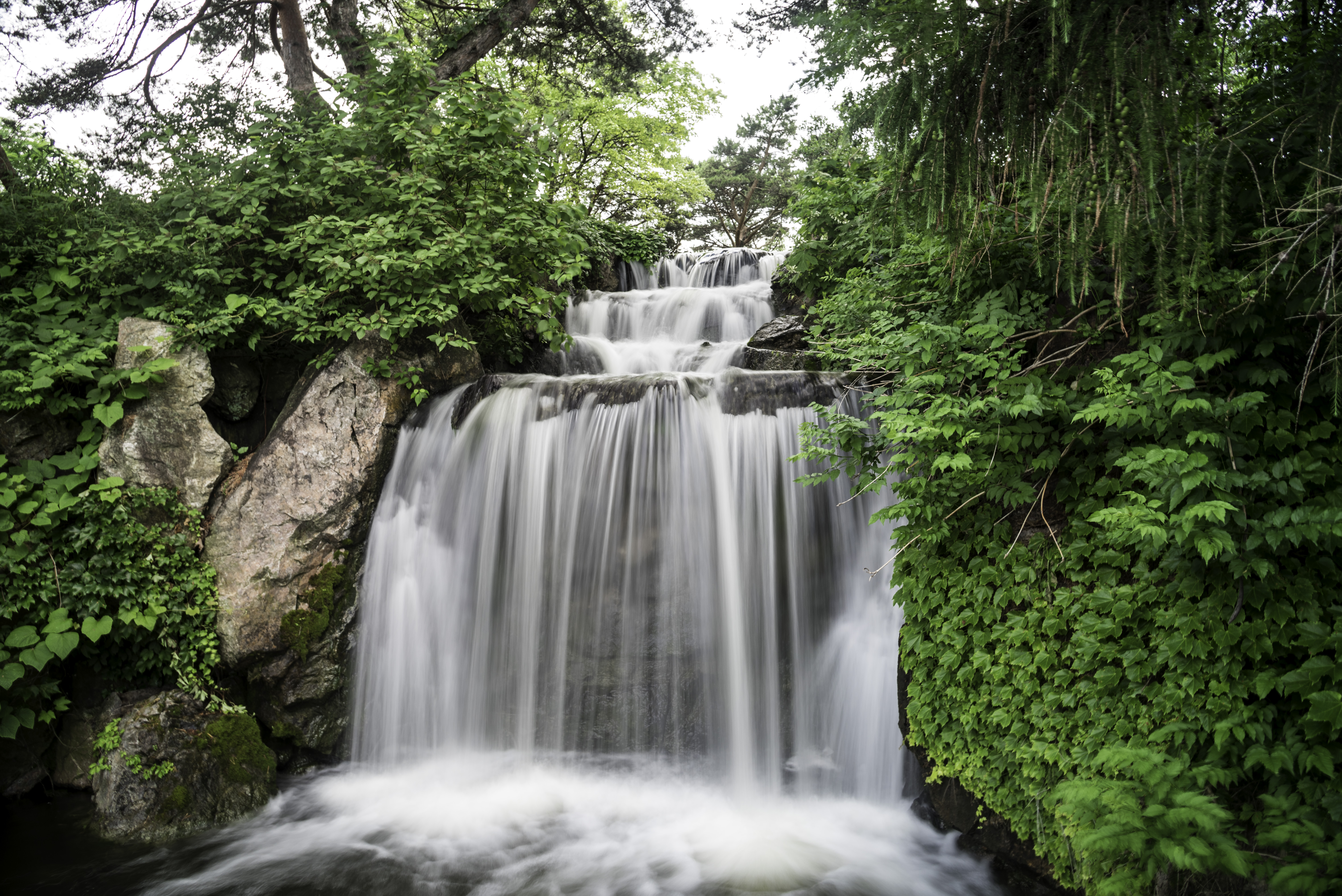 Free Photos USA Illinois Chicago Beautiful Waterfall In The Botanical Gardens
