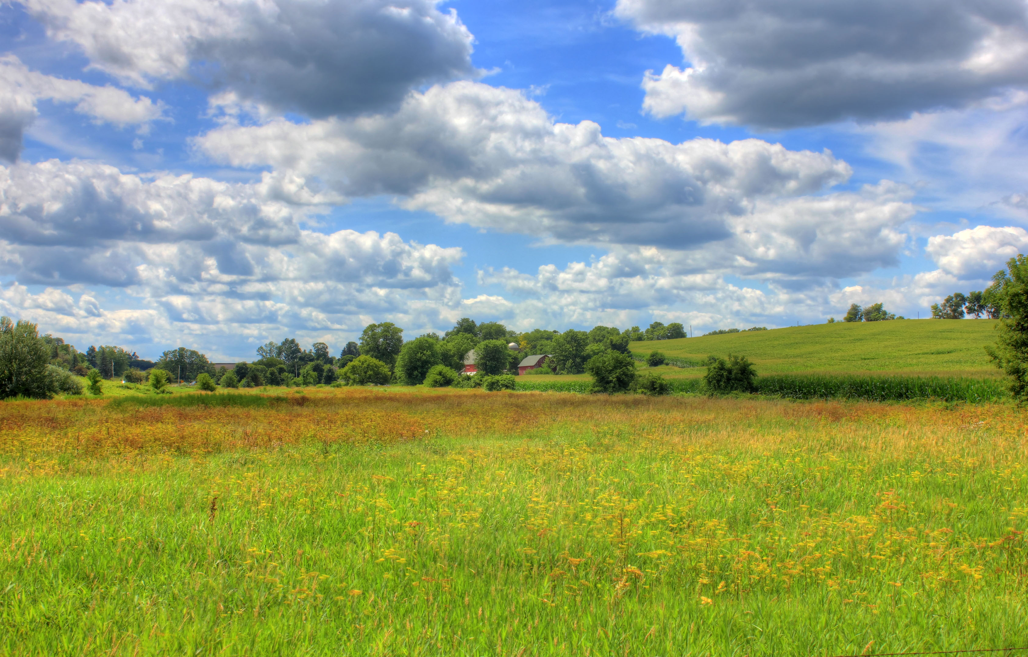 Landscape With Clouds On The Jane Adams Trail Illinois Image Free Stock Photo Public Domain