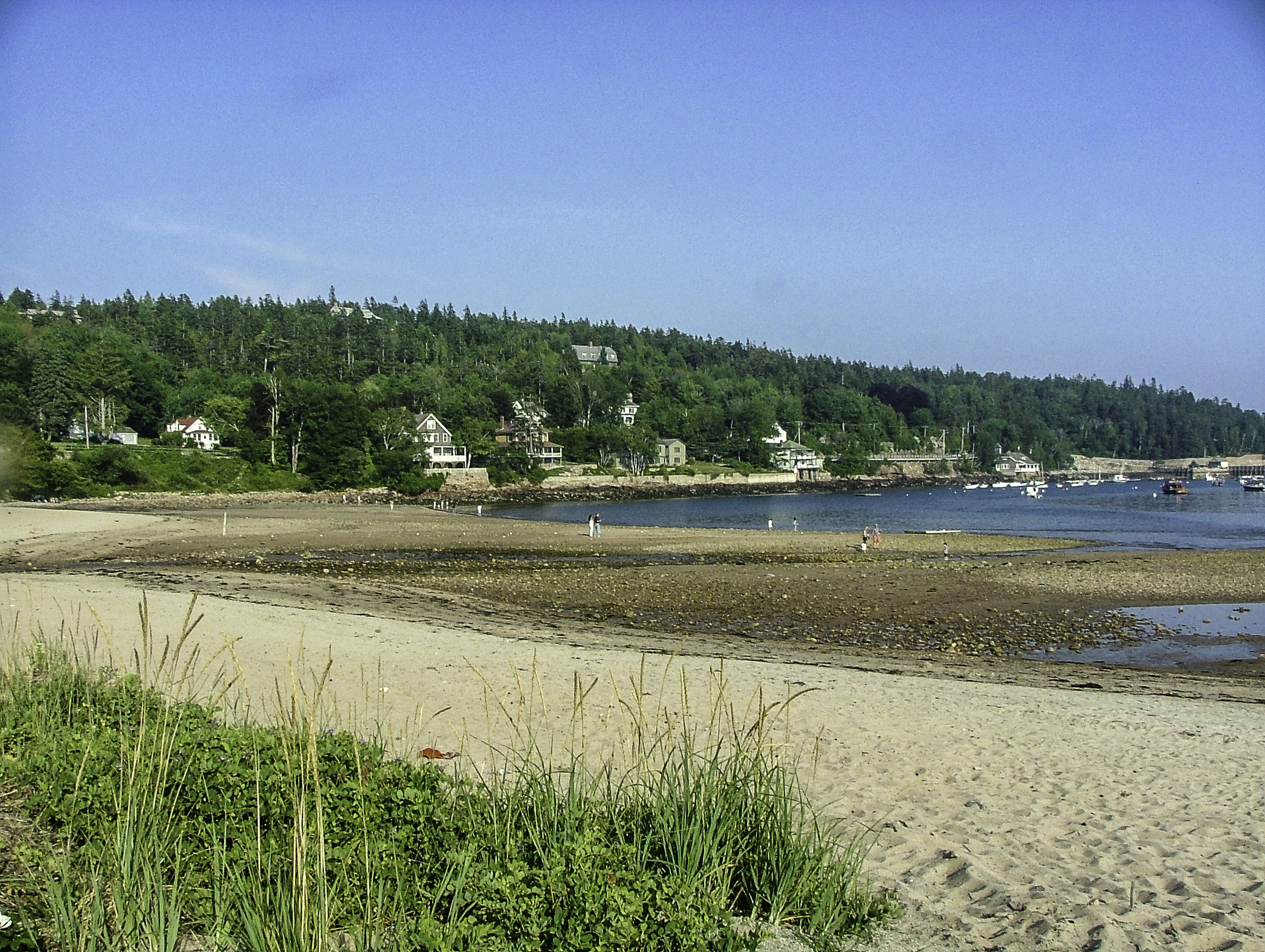 Image result for Good Harbor Beach
