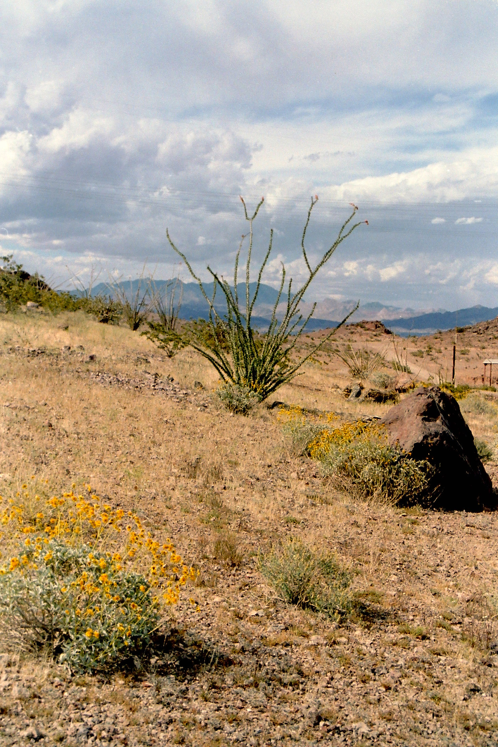 landscape of the desert around lake mead nevada image free stock