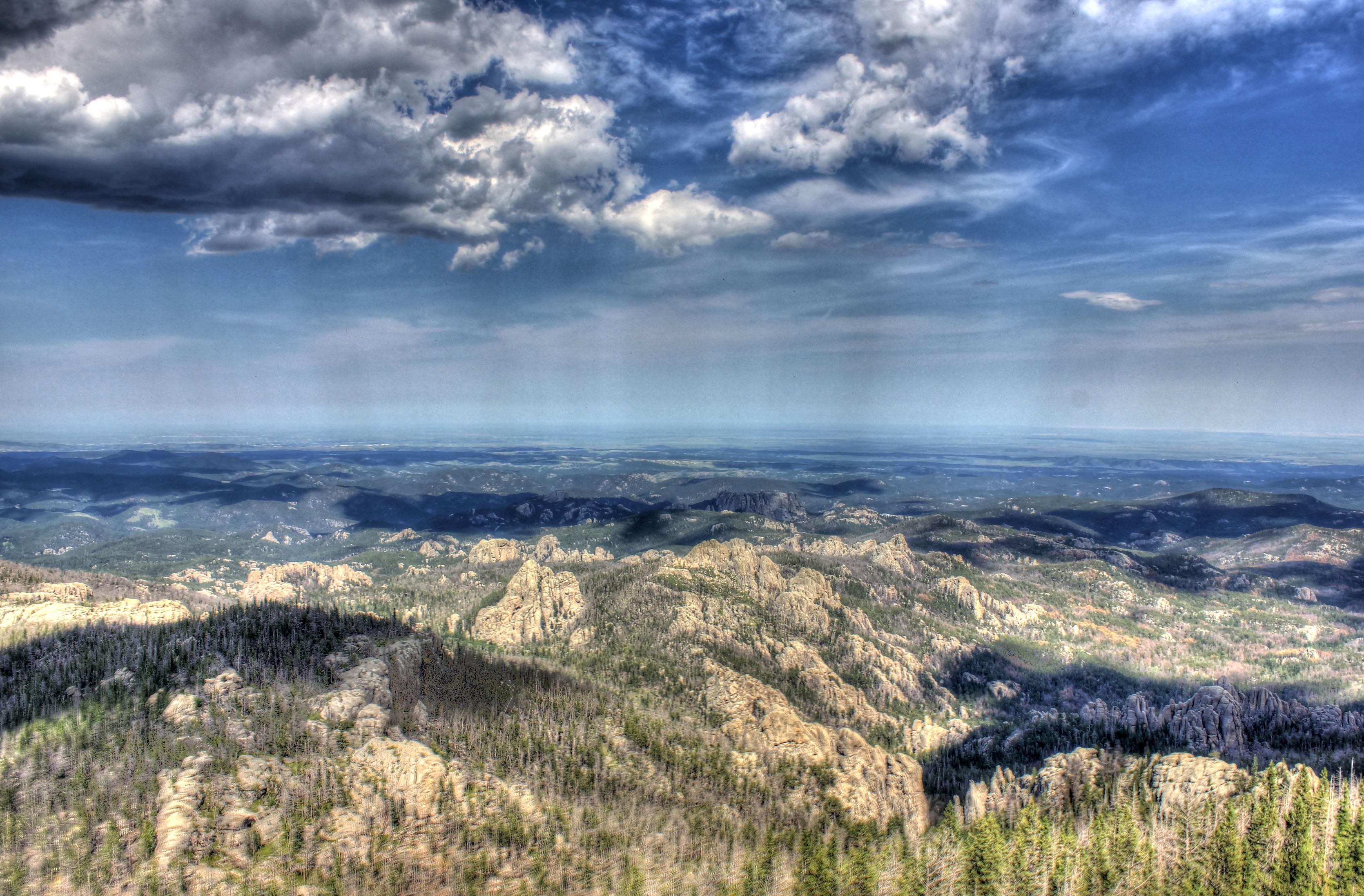 Landscape of Black Hills