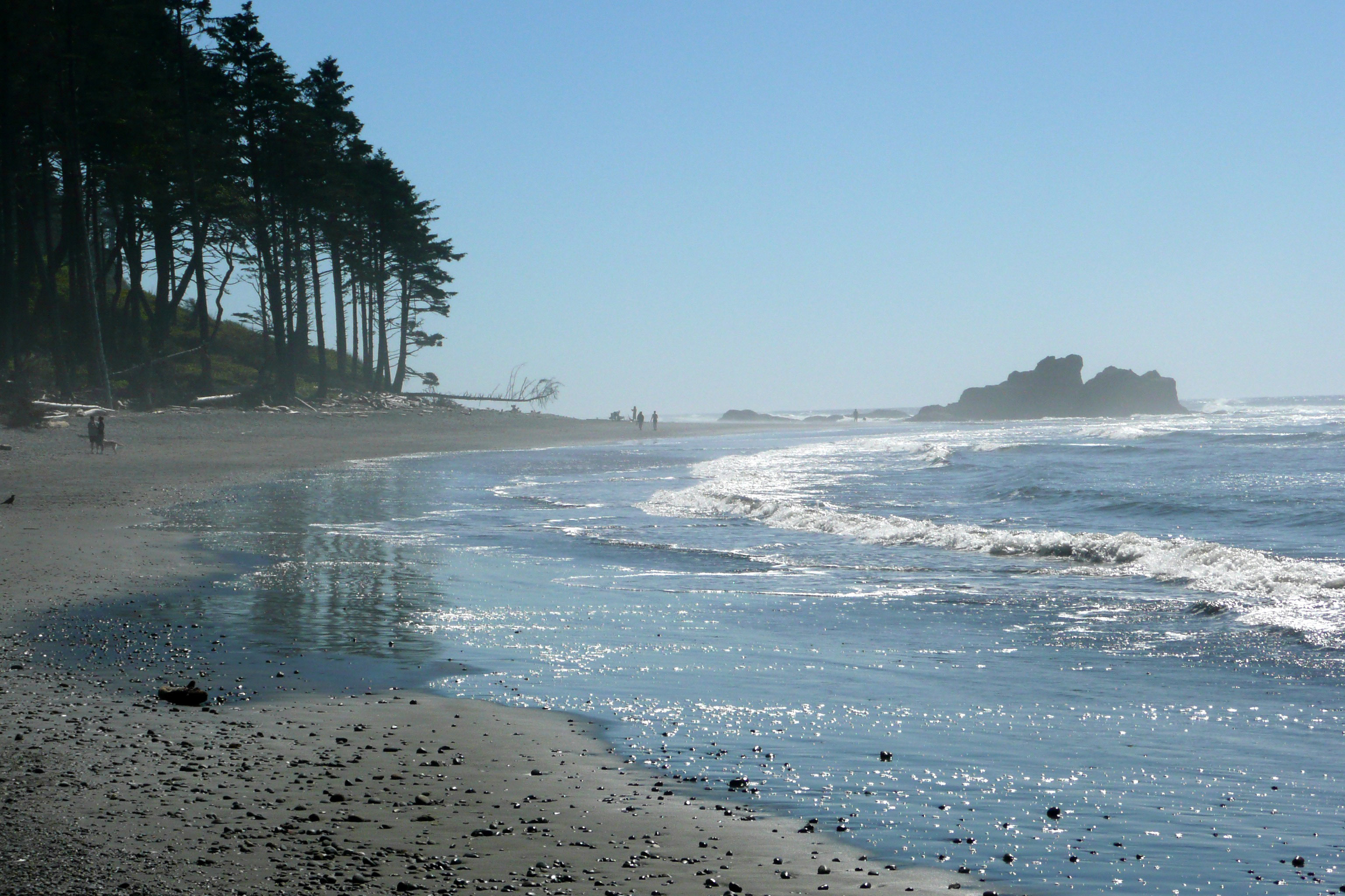 Ruby Beach With Waves In Washington Image Free Stock