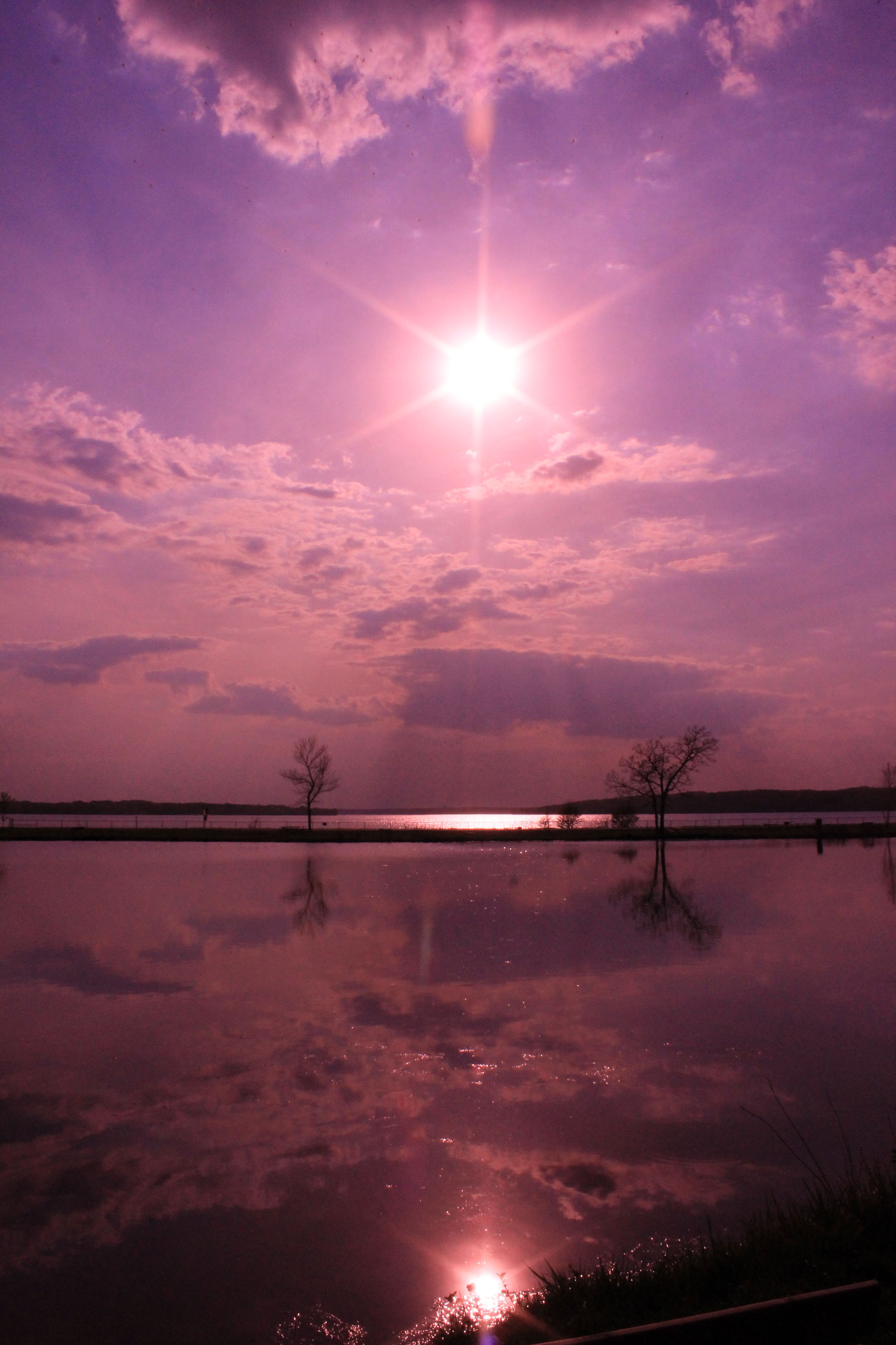 Purple Lake Geneva