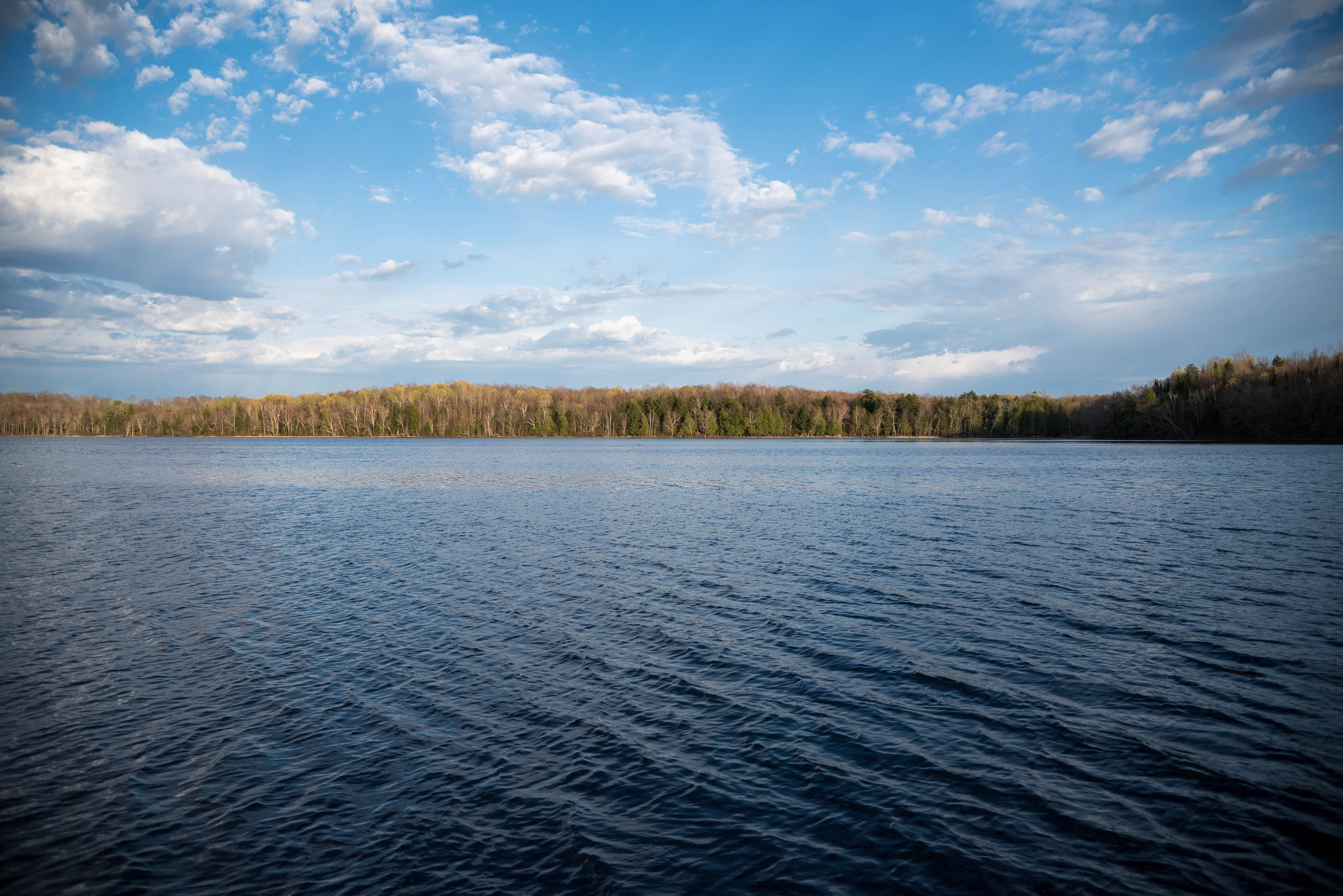 Landscape And Nature Scenery At Lake Of The Pines Image