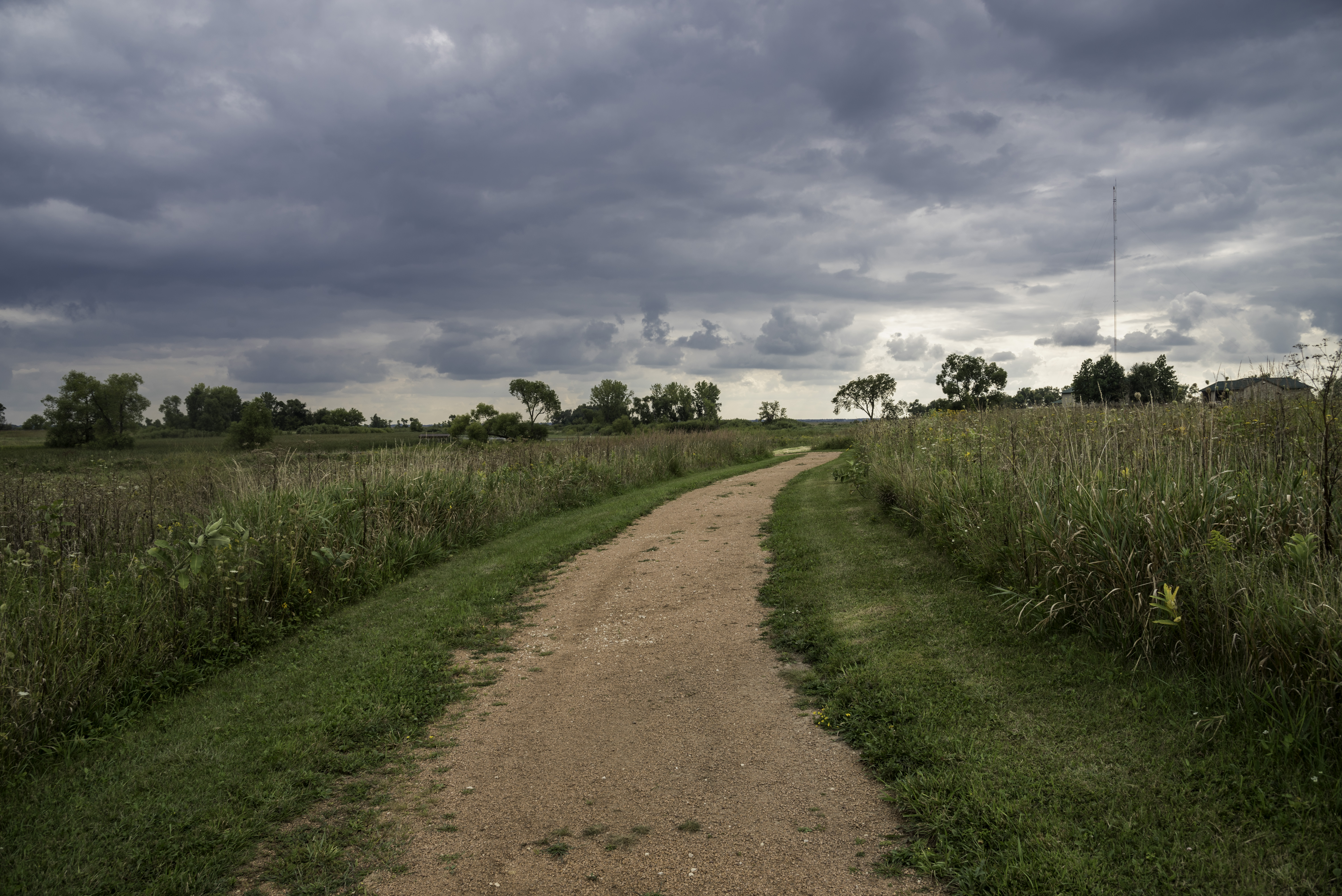 Path through the tall grass at Horicon Marsh image - Free