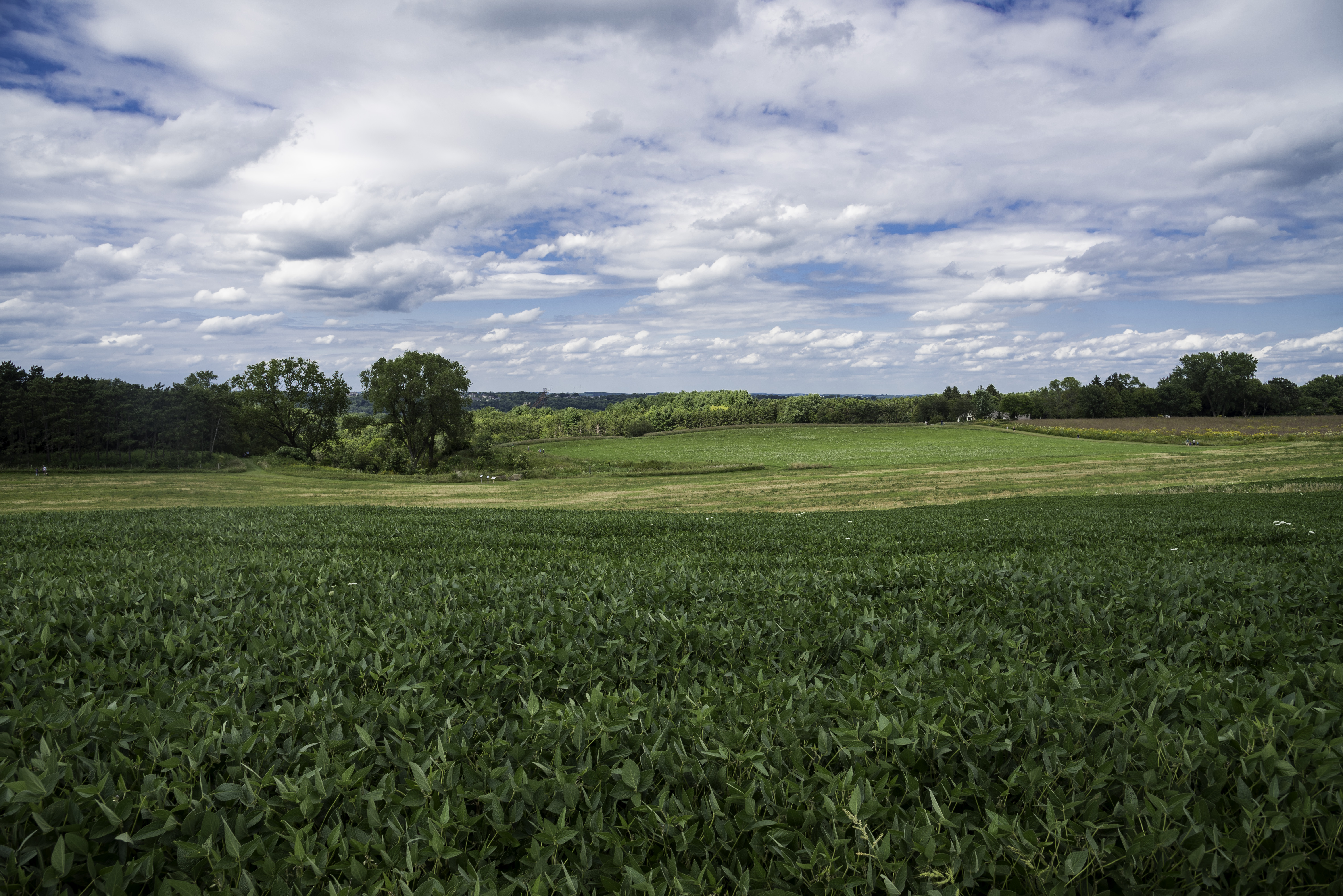 Farm and Landscape at Pope Conservancy in Middleton image ...