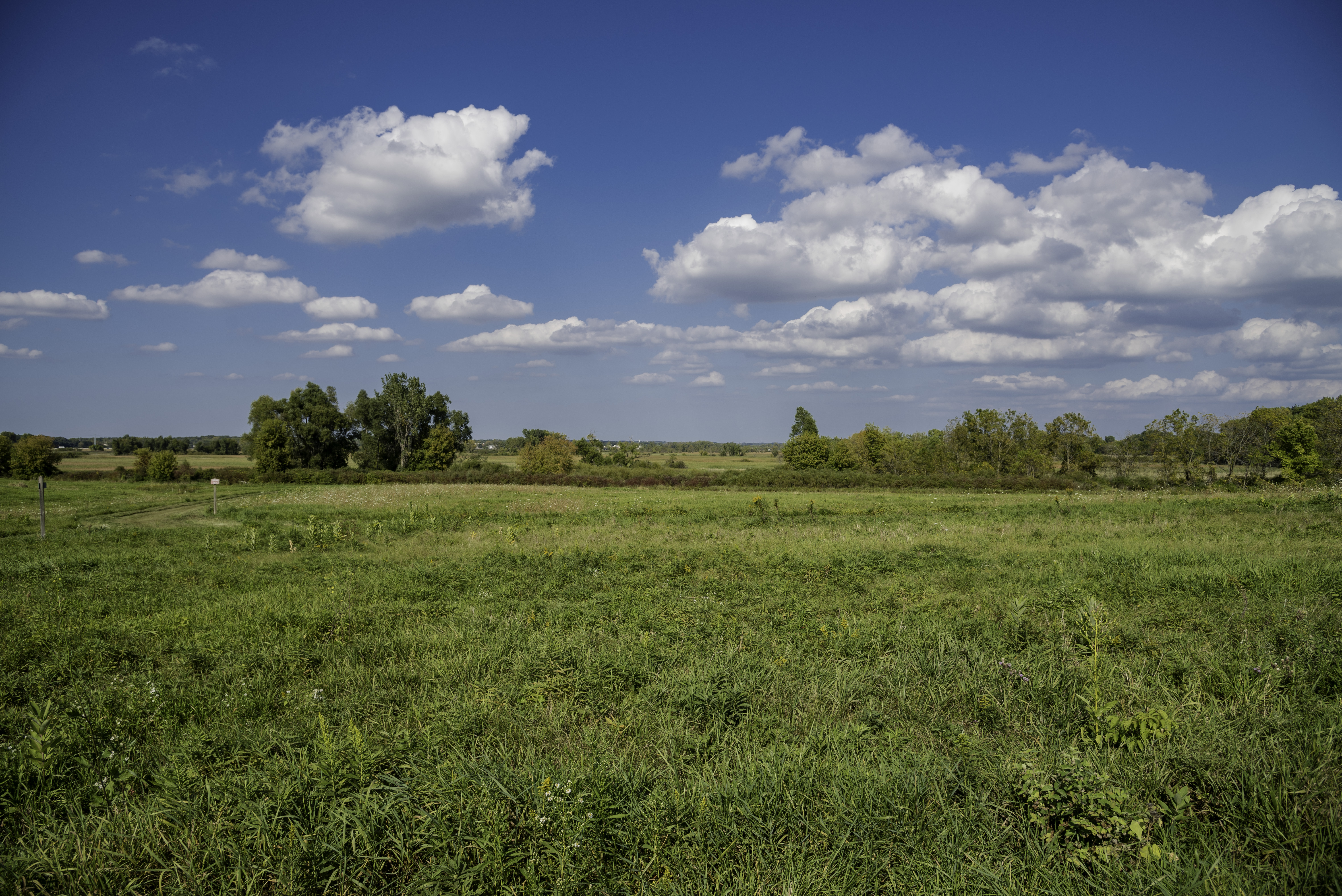 Grassy Field Landscape Under Sky And Clouds Image