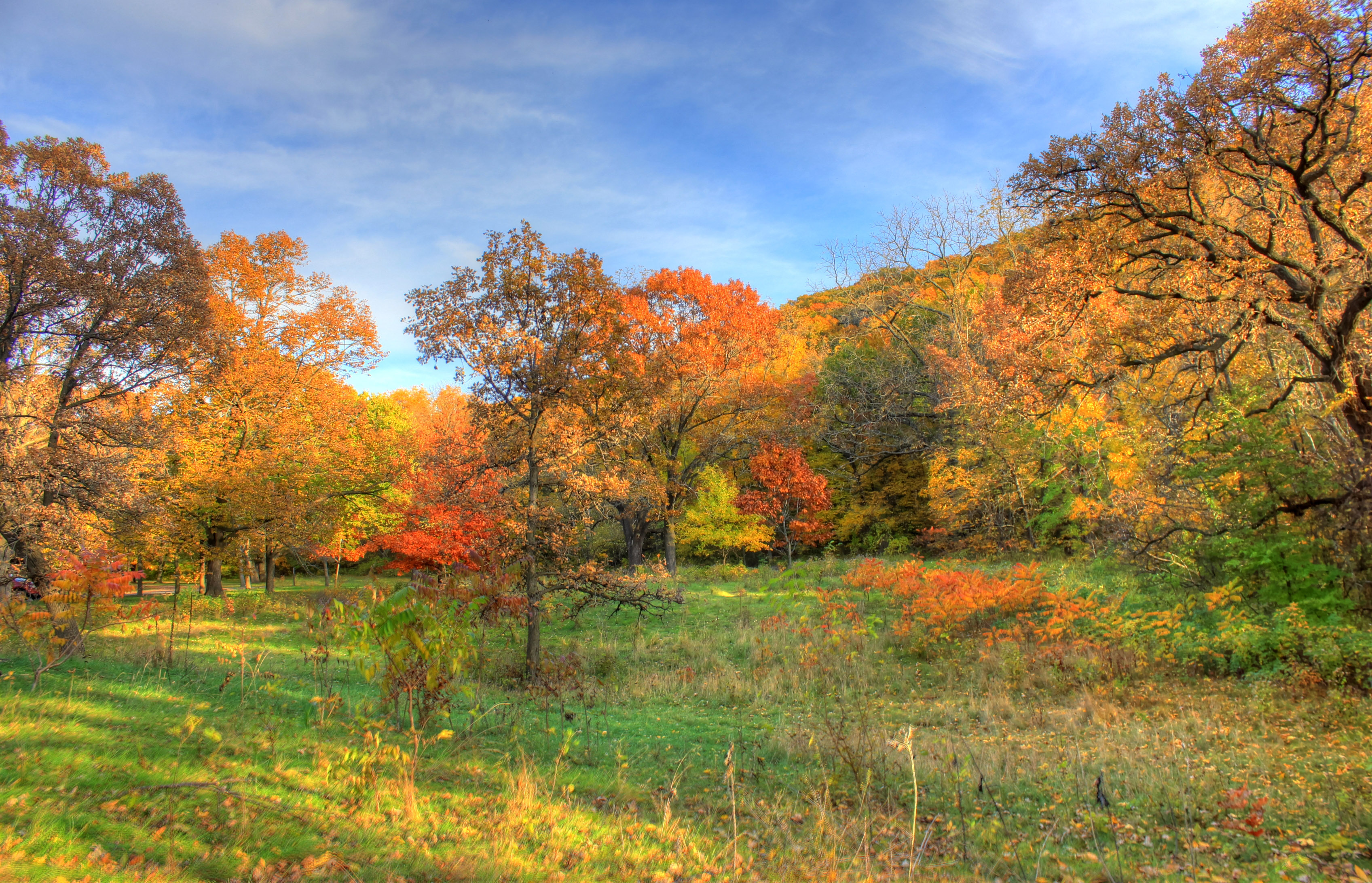 Great colorful autumn landscape at Perrot State Park ...