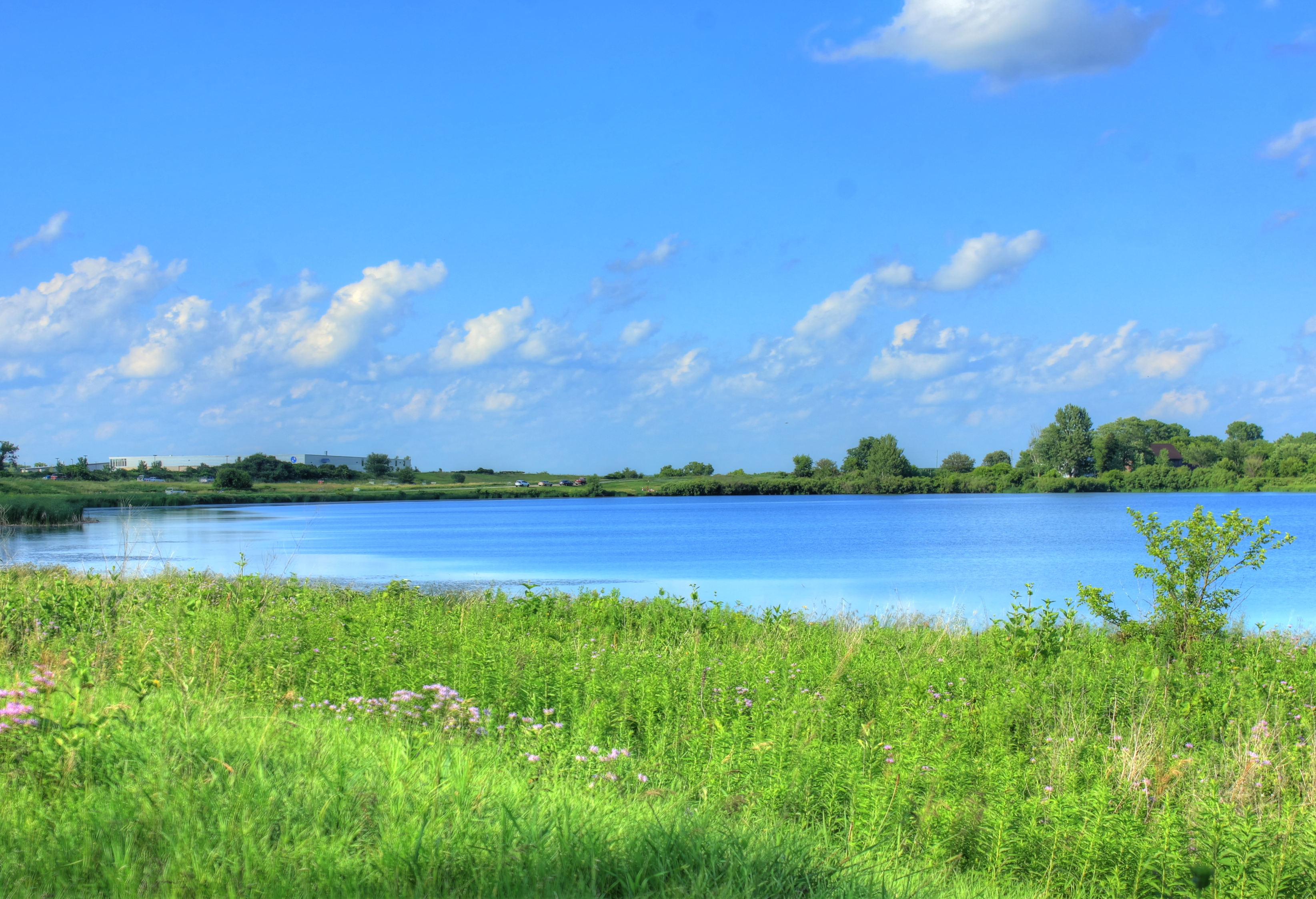 pond on a clear day in wisconsin image free stock photo public