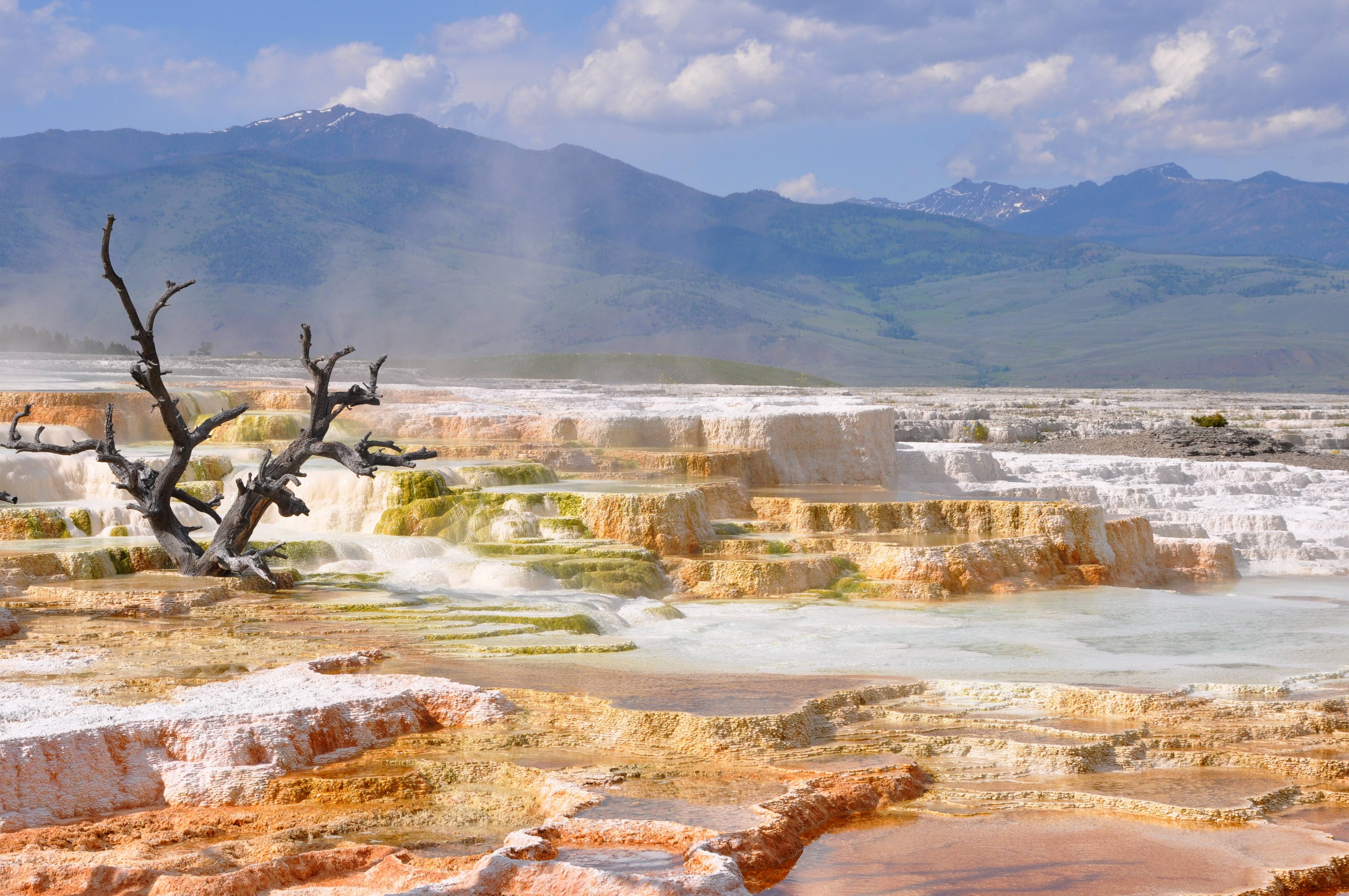 Yellowstone landscape near mammoth springs in wyoming for Nearby landscapers