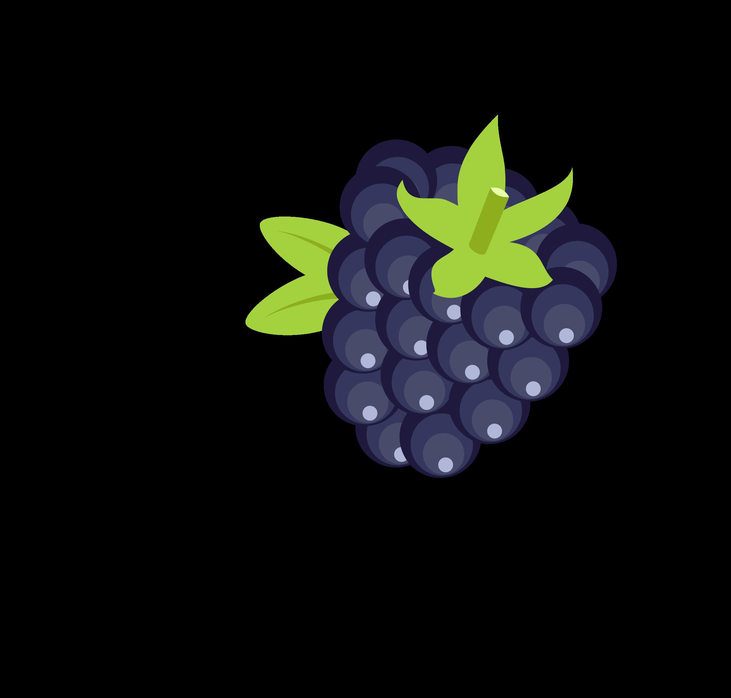 free png Blackberry Clipart images transparent