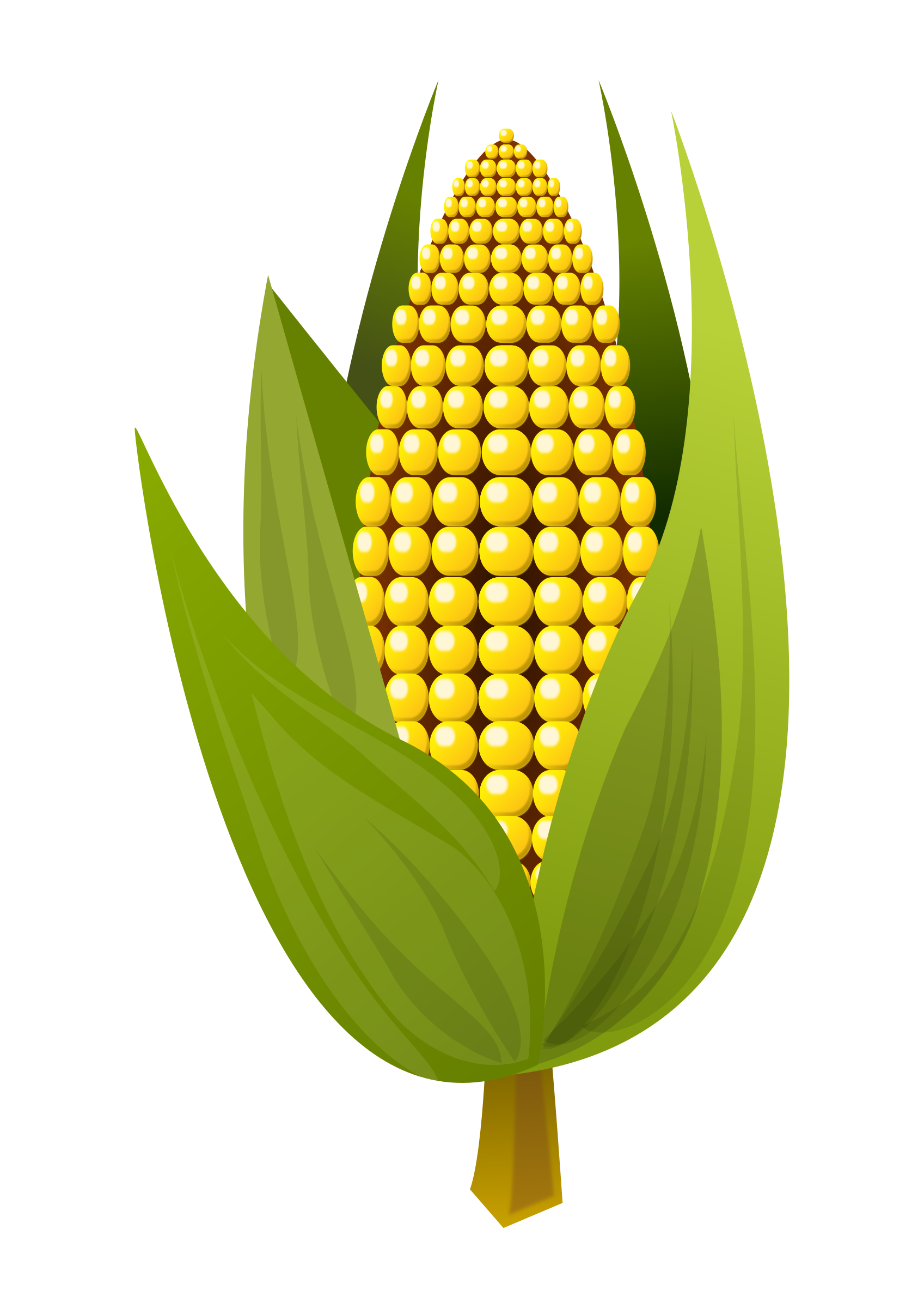 Ear Of Corn Clipart - Free Transparent PNG Clipart Images Download