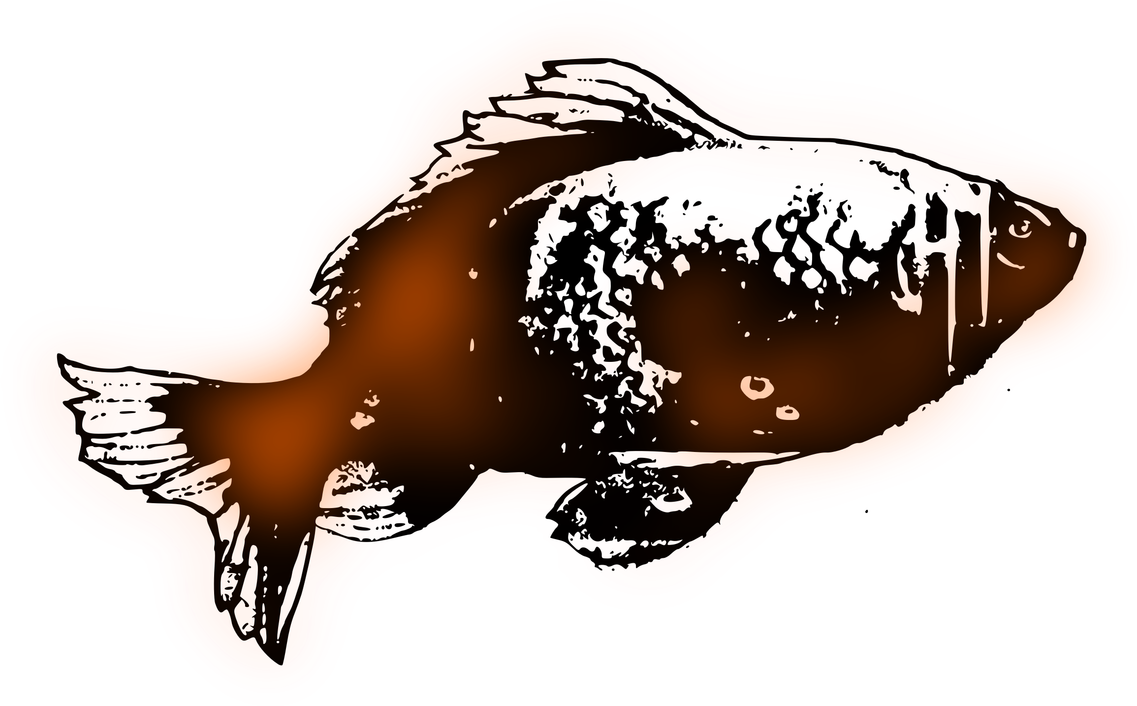 Goldfish Sketch Vector Clipart Image Free Stock Photo Public Domain Photo Cc0 Images
