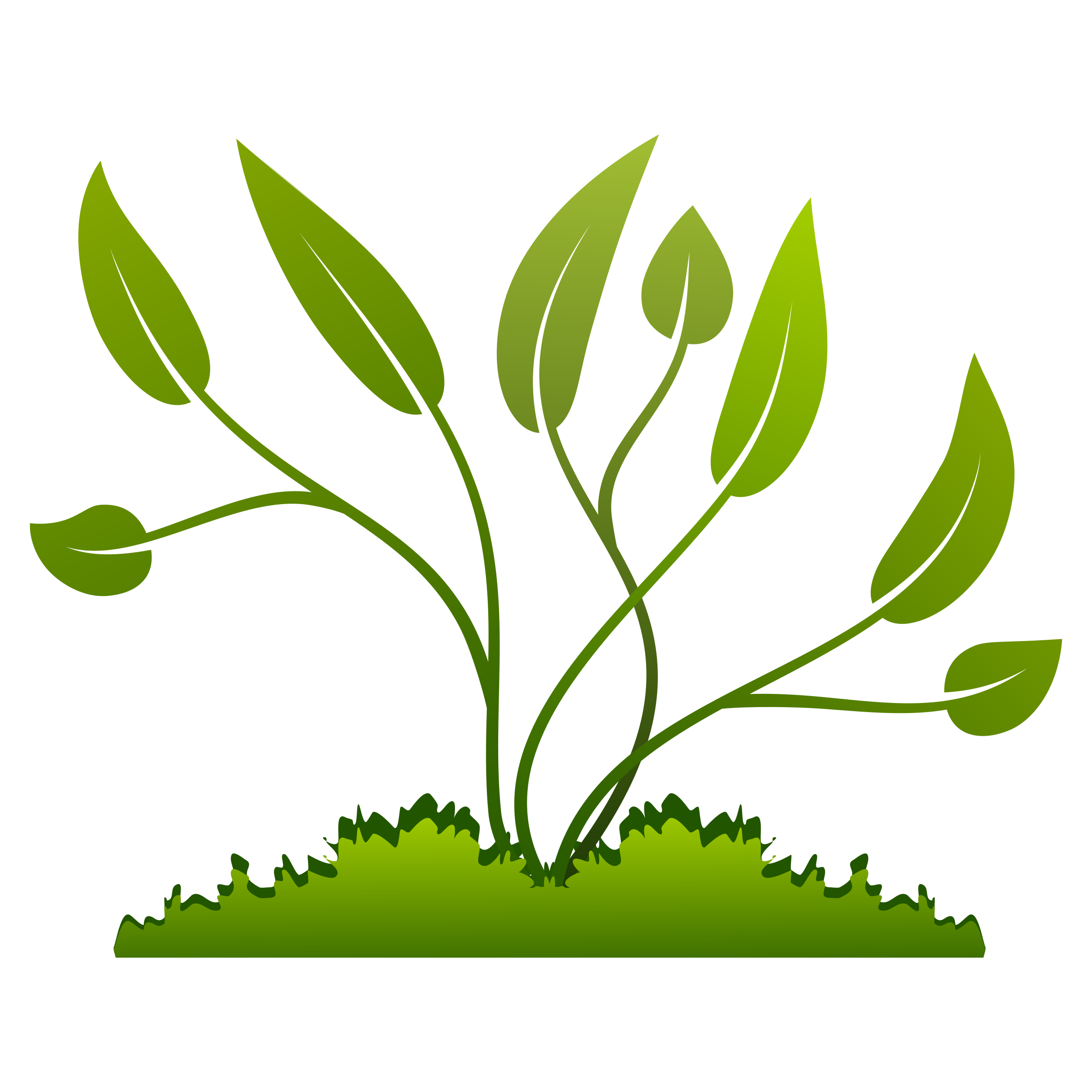 Image result for plant vector graphic public domain