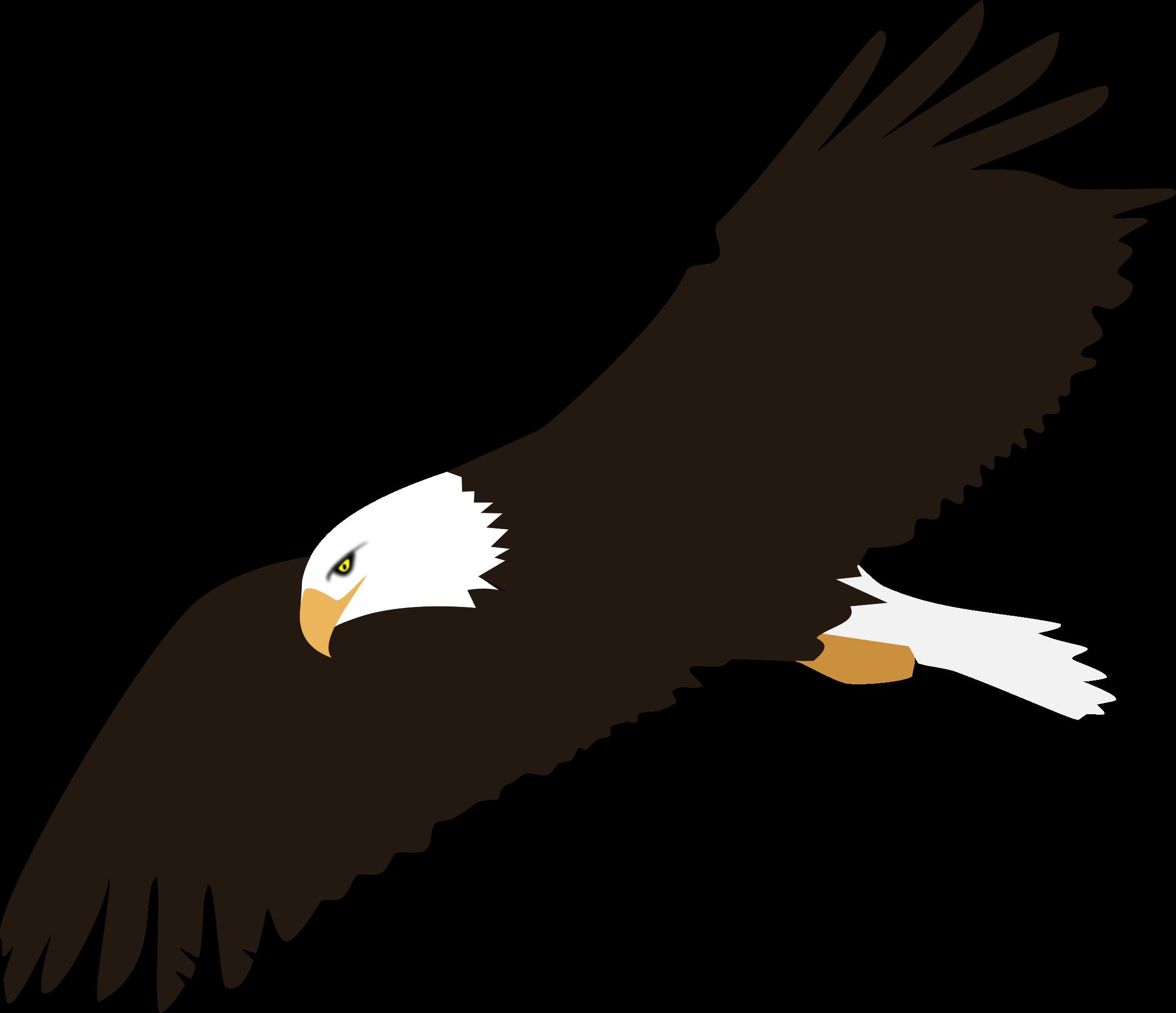 soaring bald eagle vector clipart image free stock photo public rh goodfreephotos com american bald eagle vector bald eagle vector brush photoshop