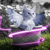 Cat with purple wings and butterflies