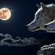 Two Wolves on a night with a full moon
